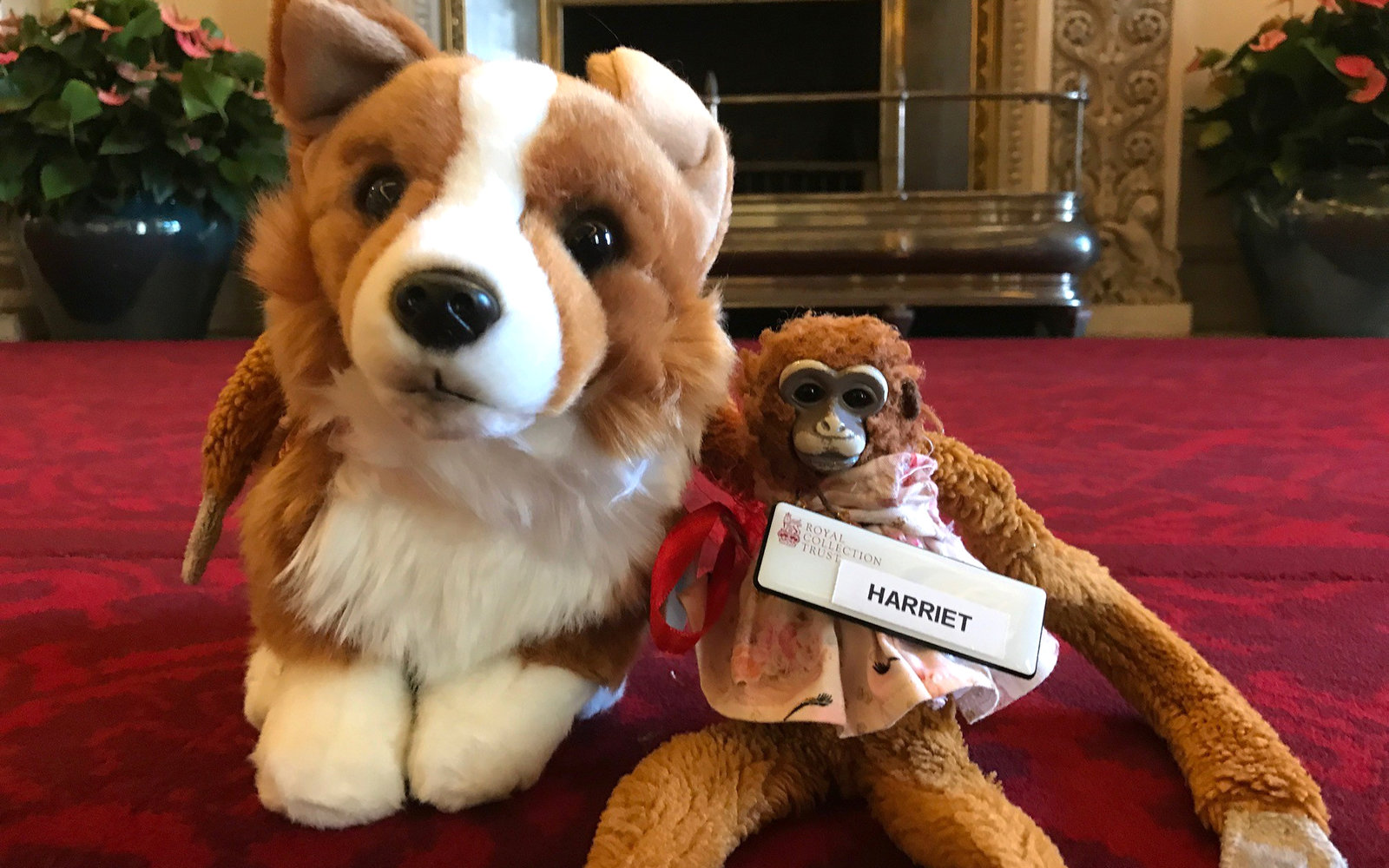Missing Toy Monkey Found at Buckingham Palace and Returned to 5-year-old After Letter to the Queen