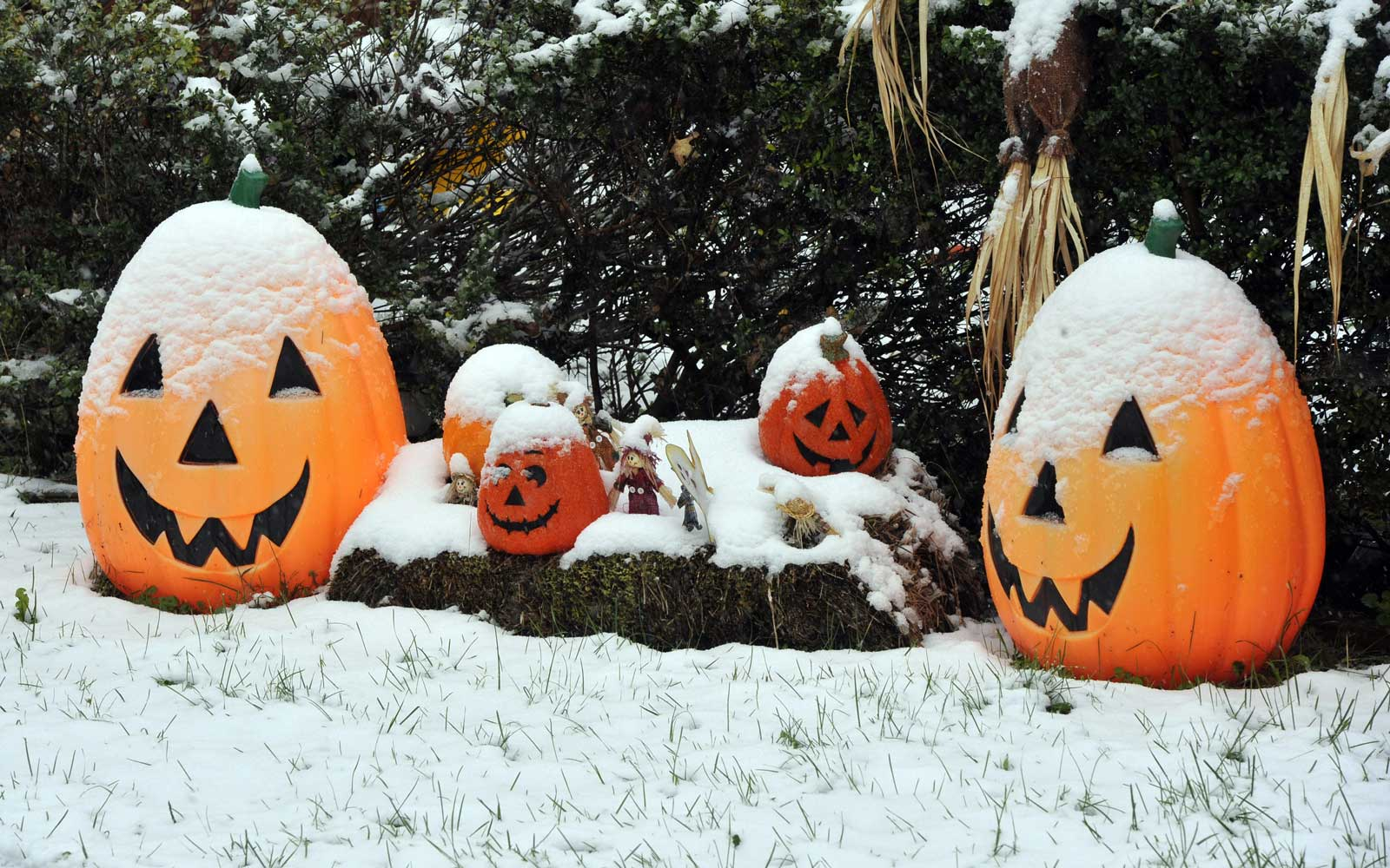 Halloween 2019: Southern Ontario forecast to get wet, warm, windy weather