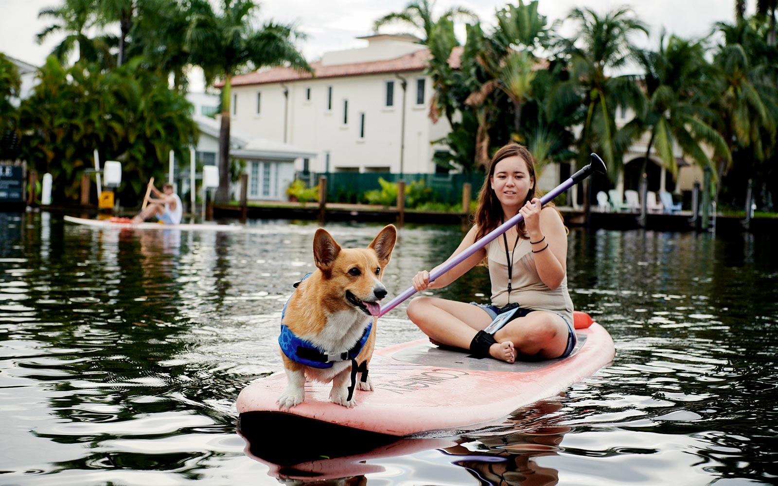 Corgi Paddleboating