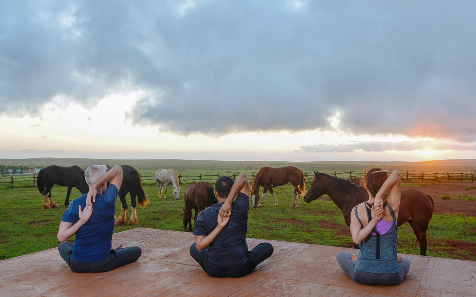 Horse Yoga at Four Seasons Lanai