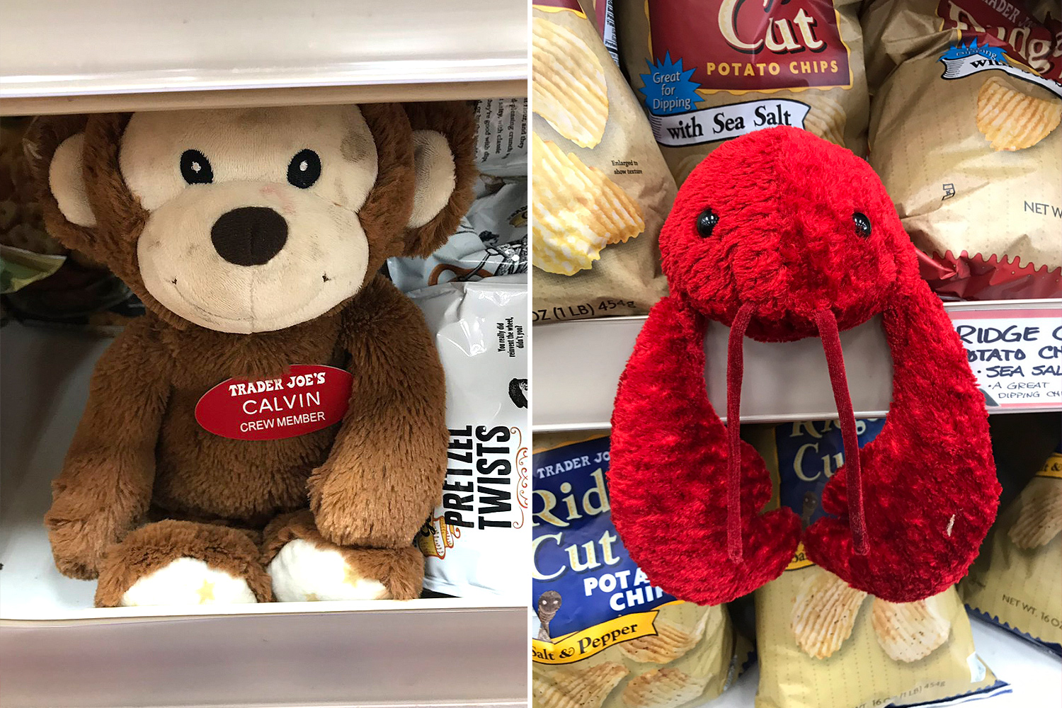 Stuffed animals in Trader Joe's