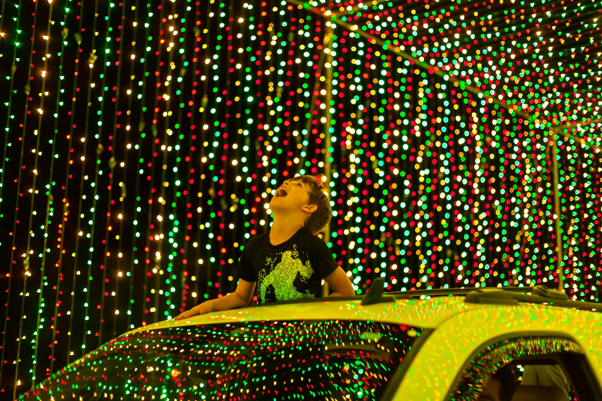 Drive Thru Christmas Lights