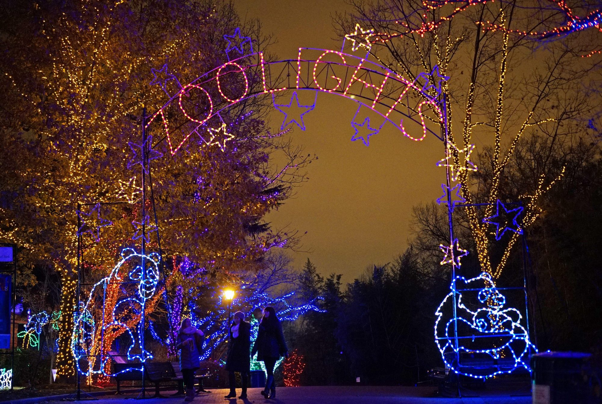 Christmas Lights in Zoo
