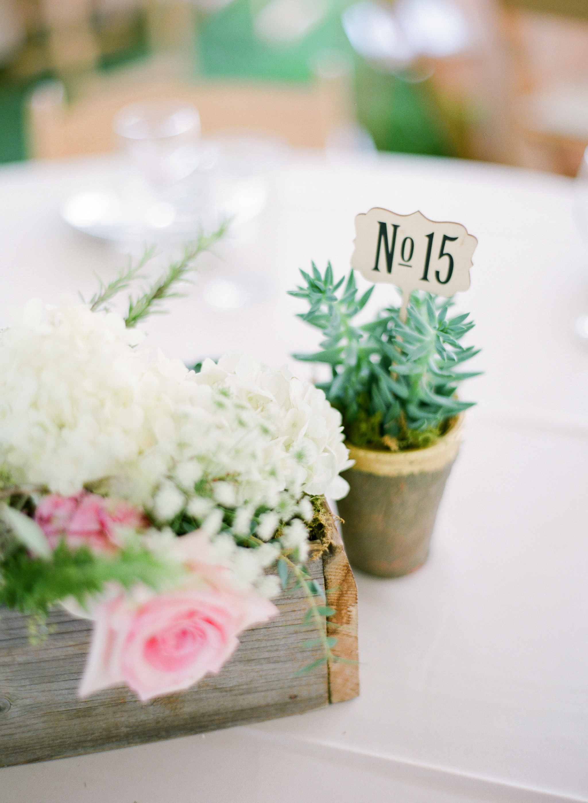 Succulent potted plant table number with vintage sign