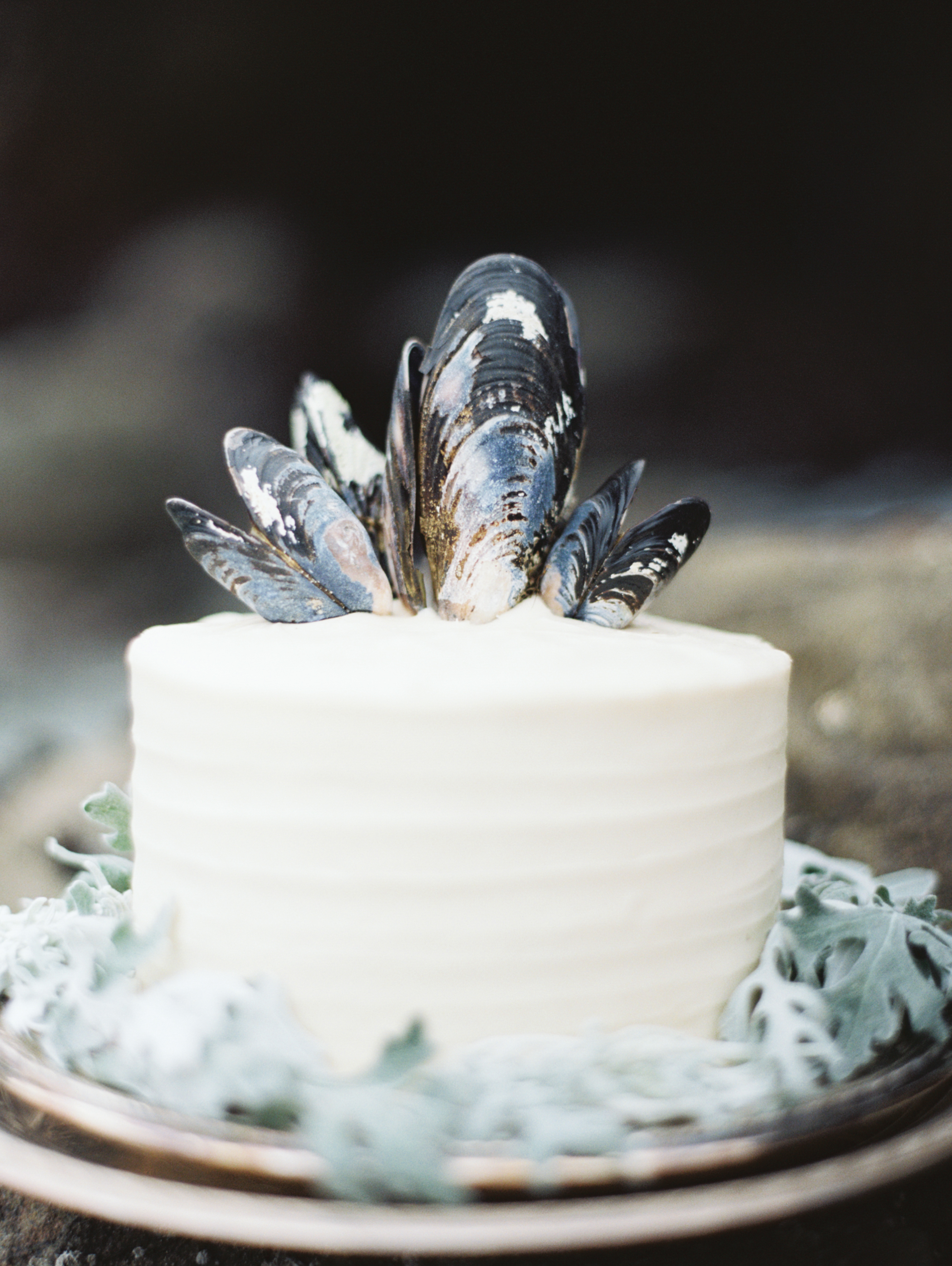 Single-Tiered Wedding Cake Topped with Shells