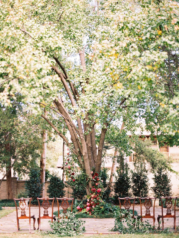 yolanda cedric wedding ceremony tree