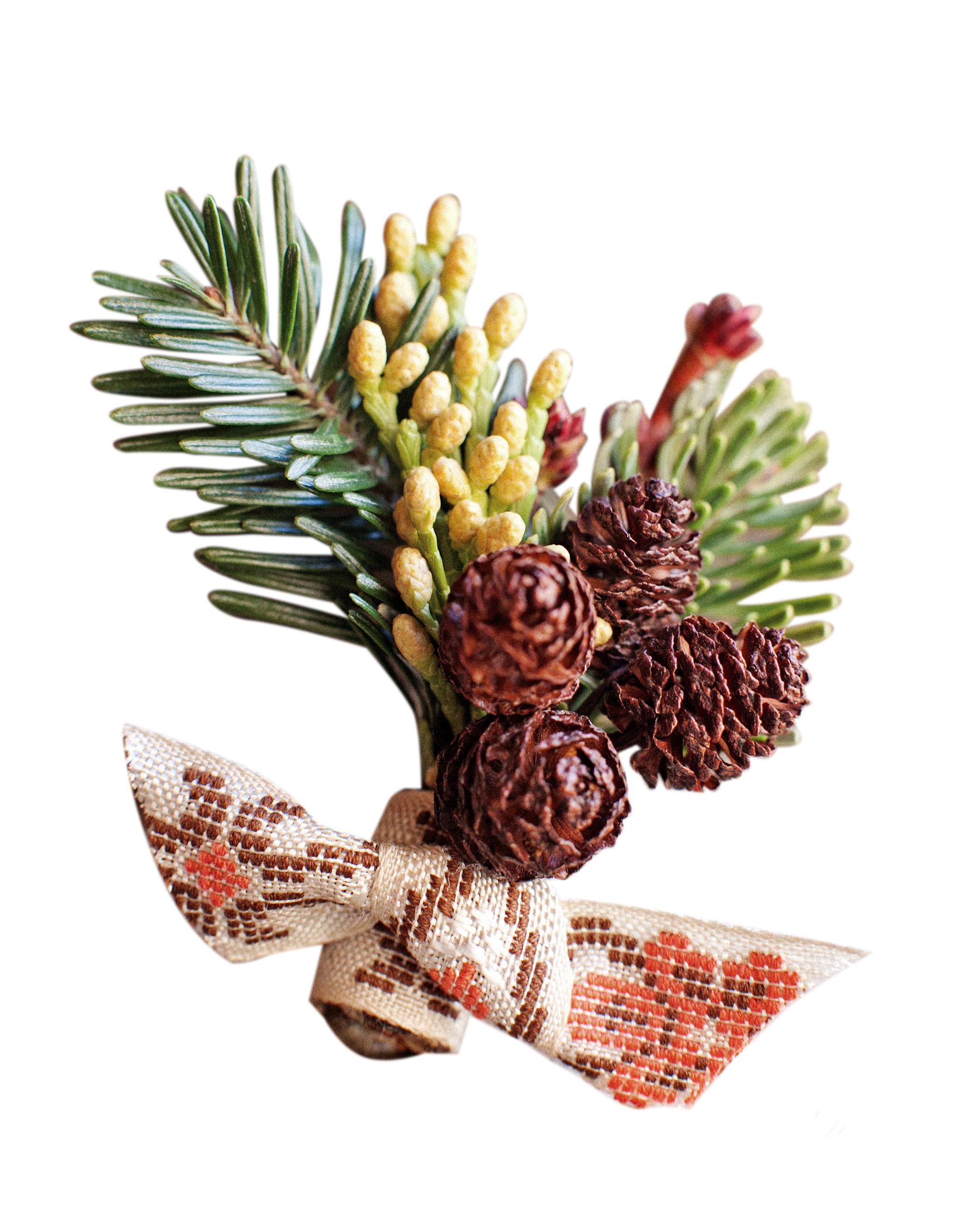 pinecones-0811mwds106661.jpg