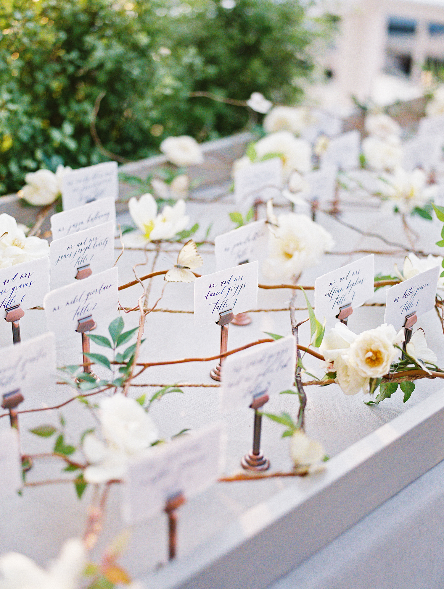 elizabeth scott wedding escort cards