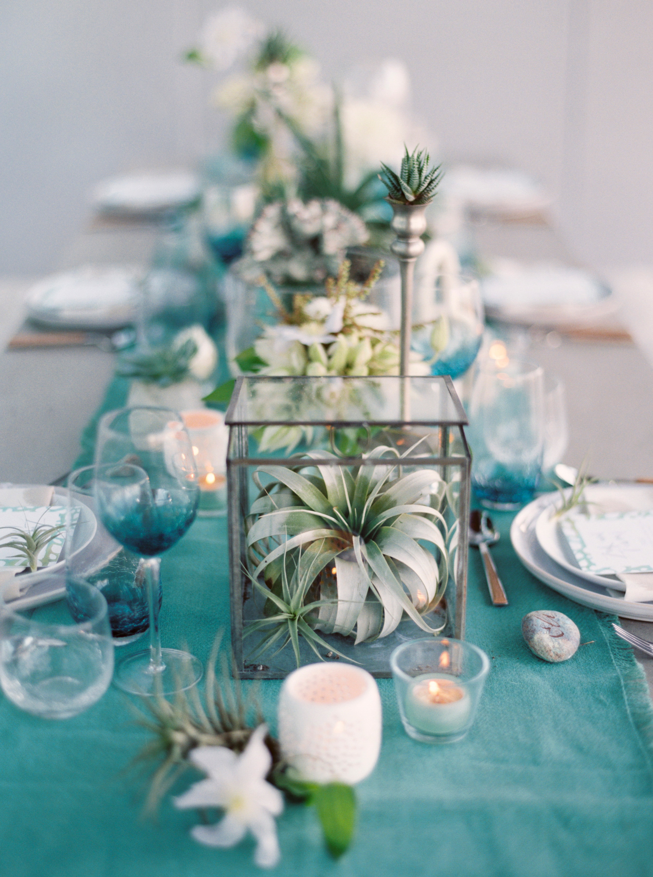 succulent centerpieces in glass boxes