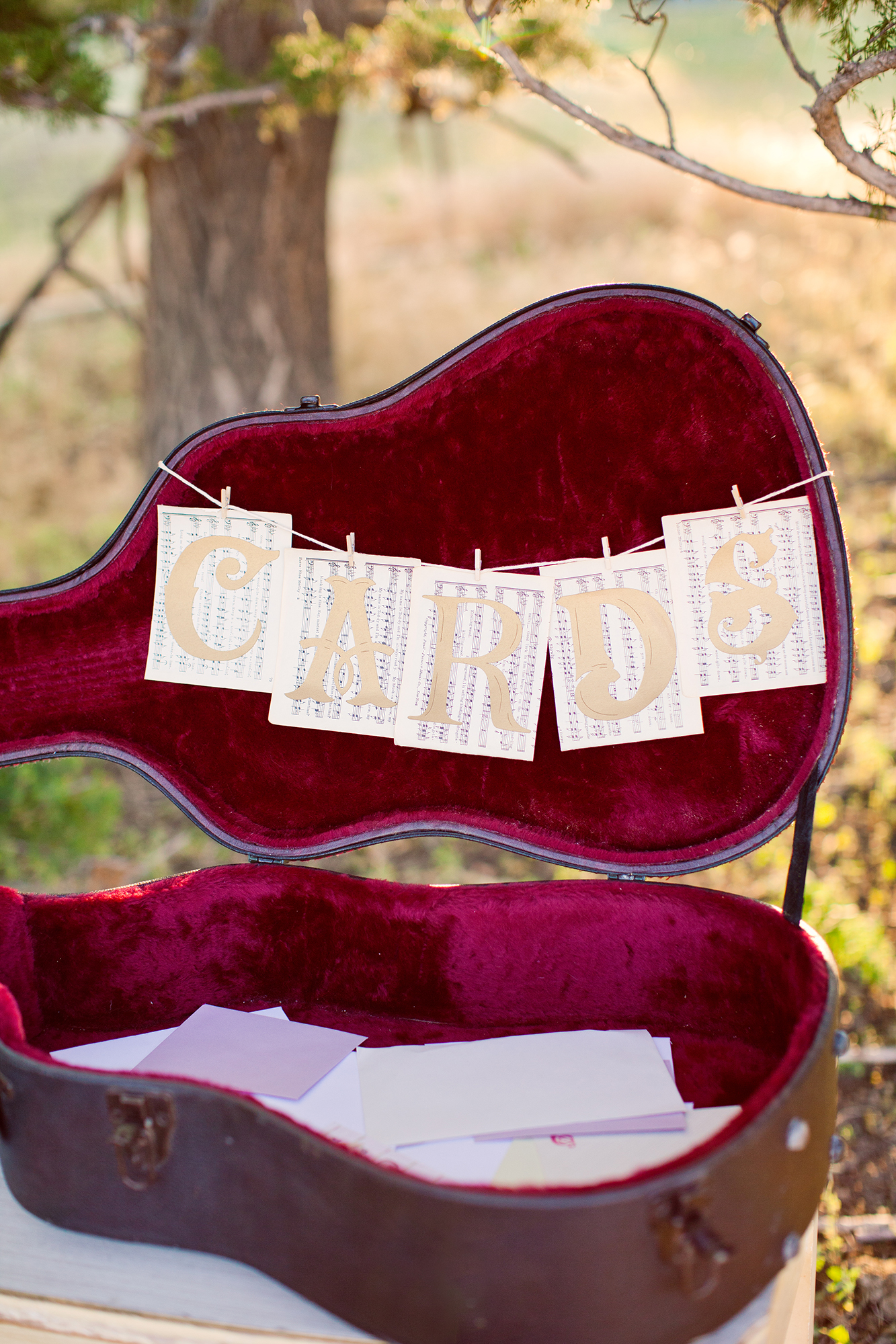 Guitar Case For Cards