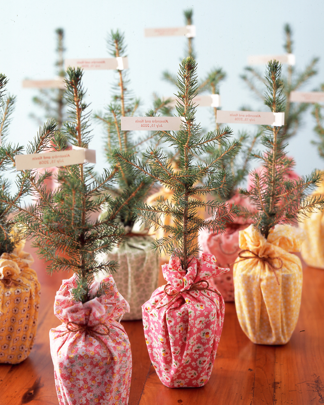 diy-winter-wedding-ideas-pinetree-favor-1114.jpg