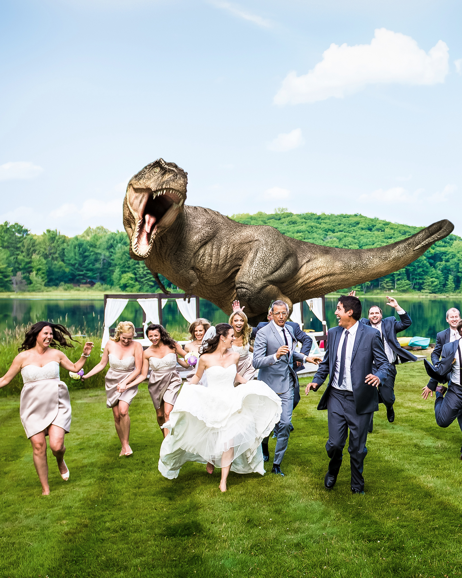 year-in-weddings-jurassic-park-jeff-goldblum-1-1214.jpg