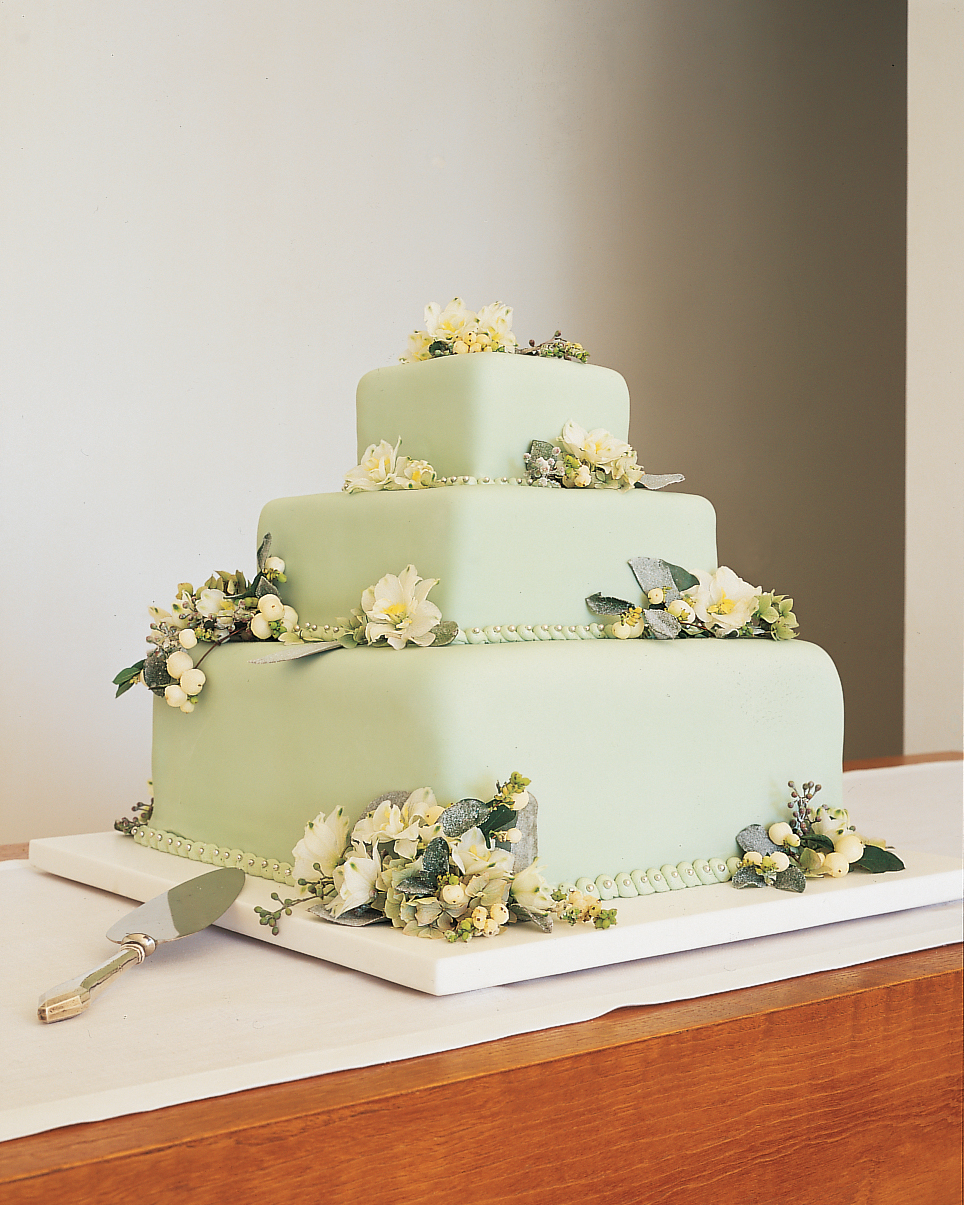 darcy-lessons-learned-green-cake-sum97-0115.jpg