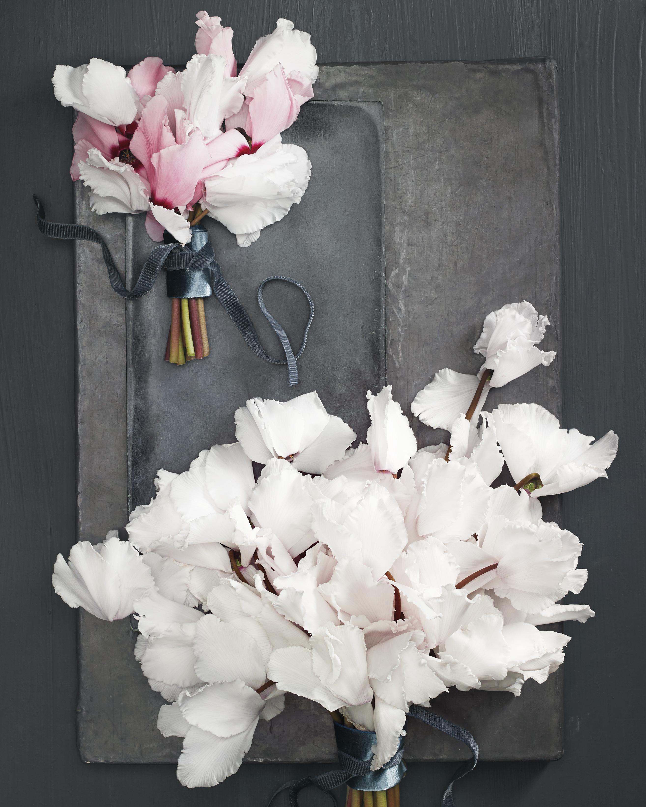 winter-1-bouquet-flowers-45484-2-d111785.jpg