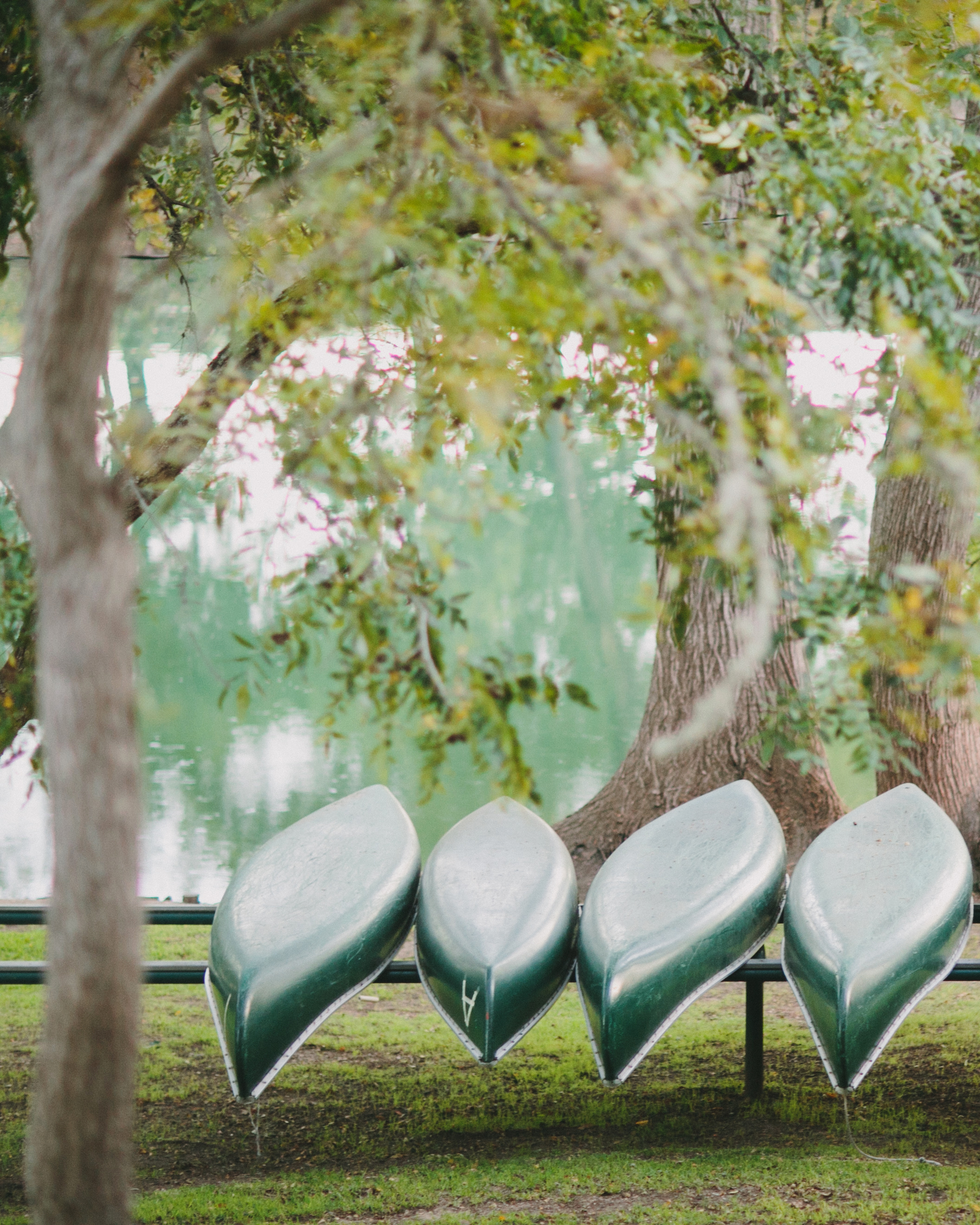 real-weddings-maggie-brandon-gjwp-091.jpg