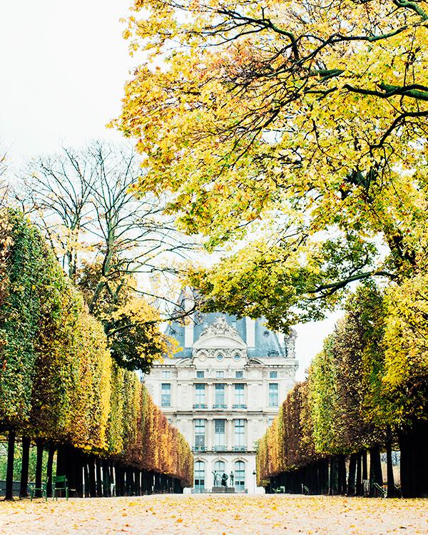 katie-mitchell-photography-where-to-propose-in-paris-jardin-des-tuileries-0815.jpg