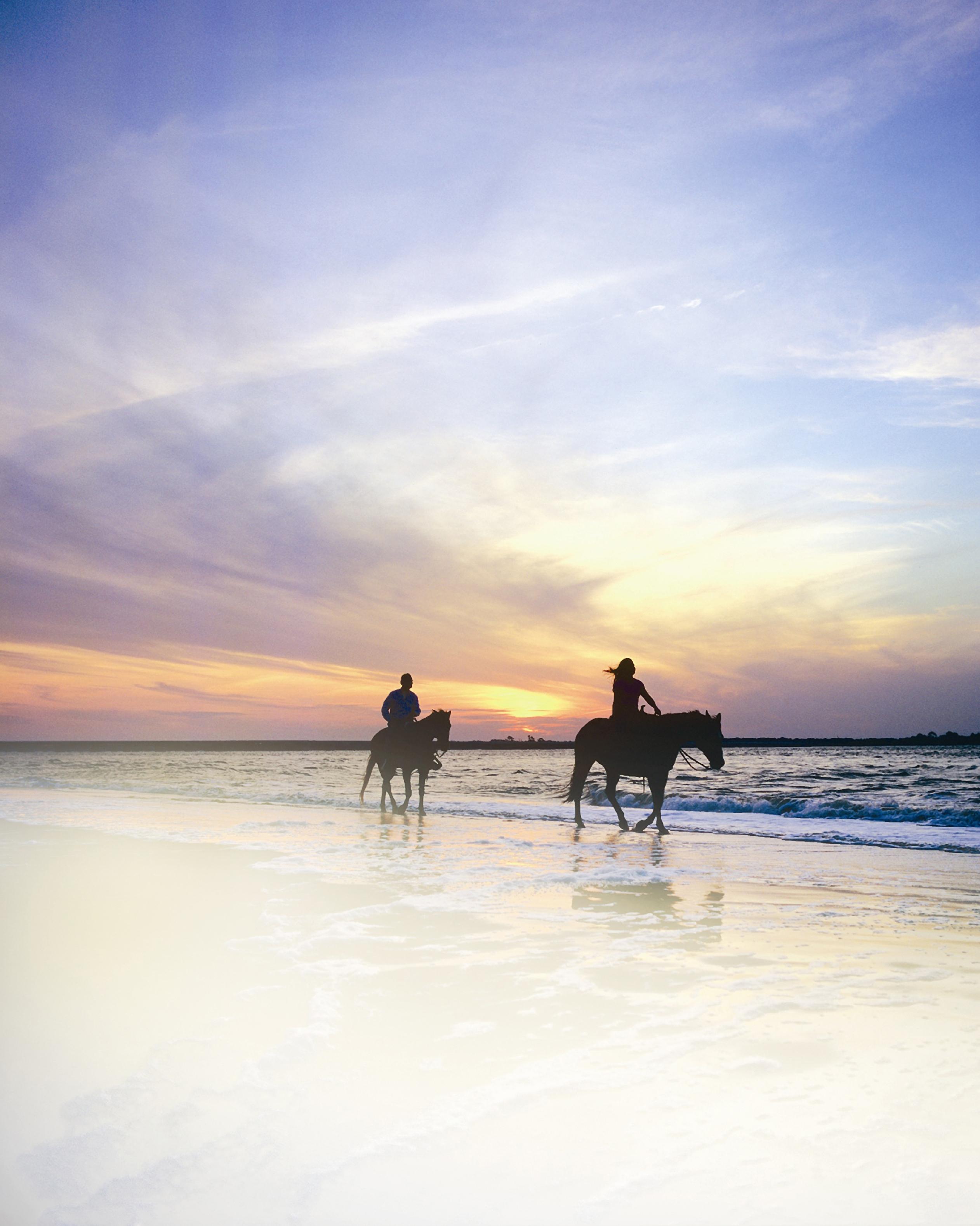 us-islands-amelia-horses-surf-beach-1115.jpg