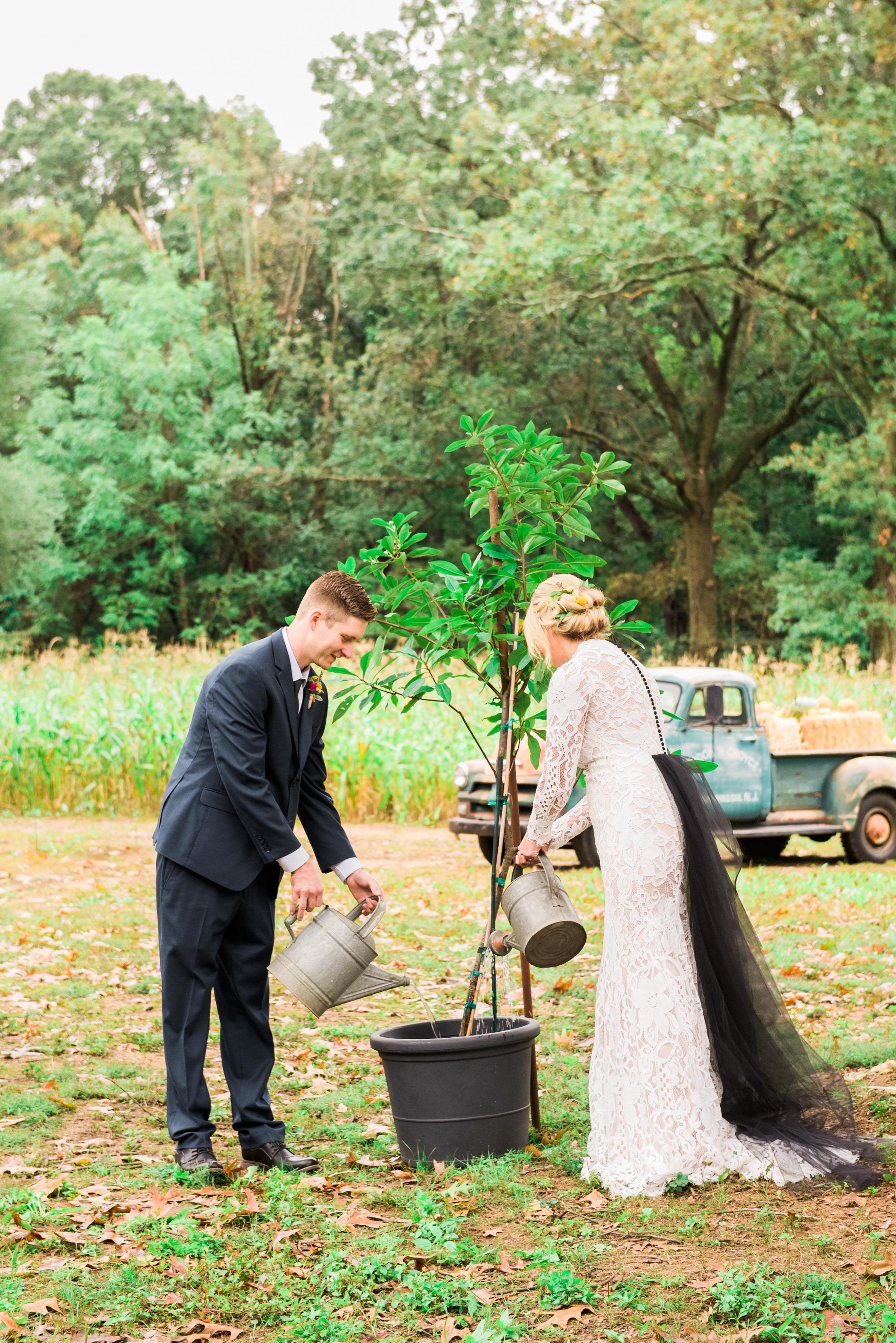 planting unity tree