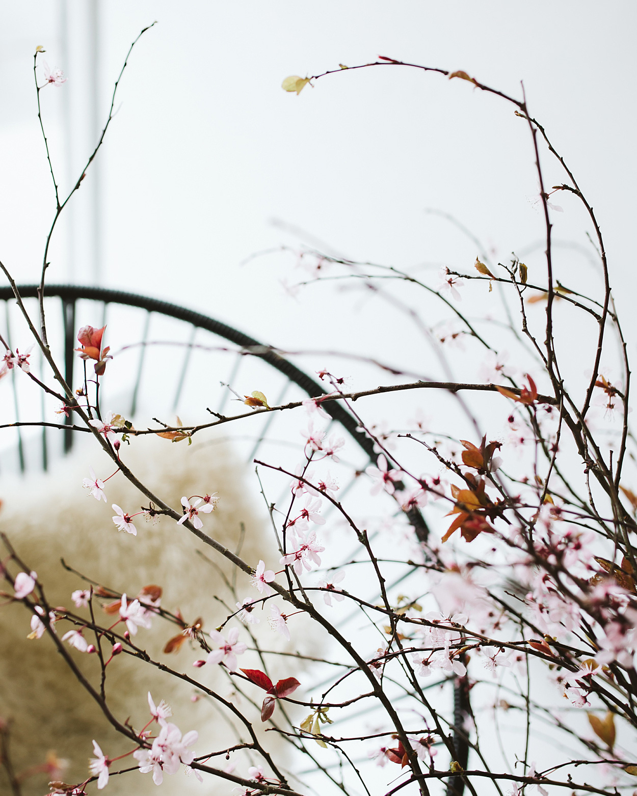 romantic-wedding-flowers-plum-blossom-branch-0516.jpg