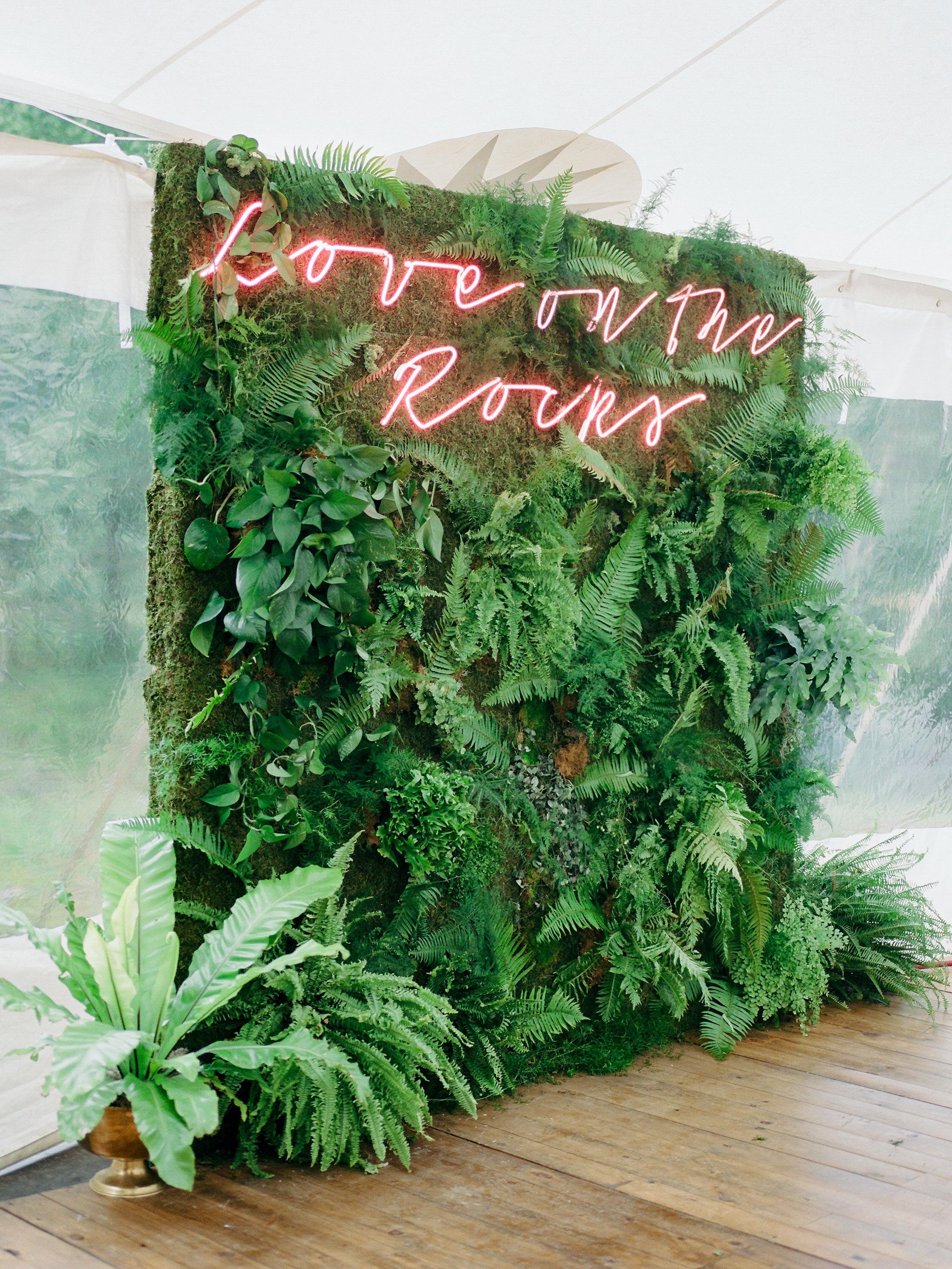 fern greenery backdrop