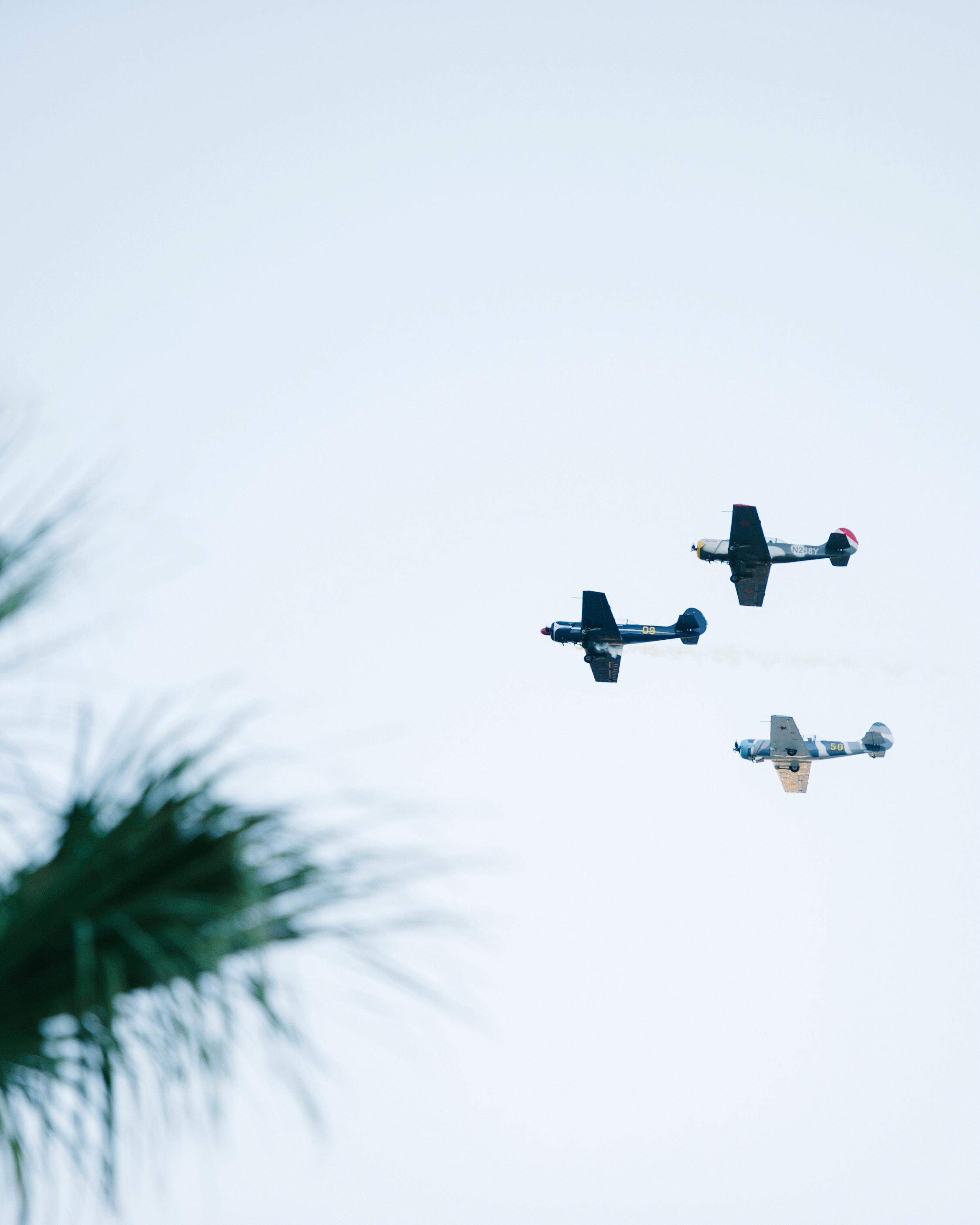 lisa louis wedding airplanes