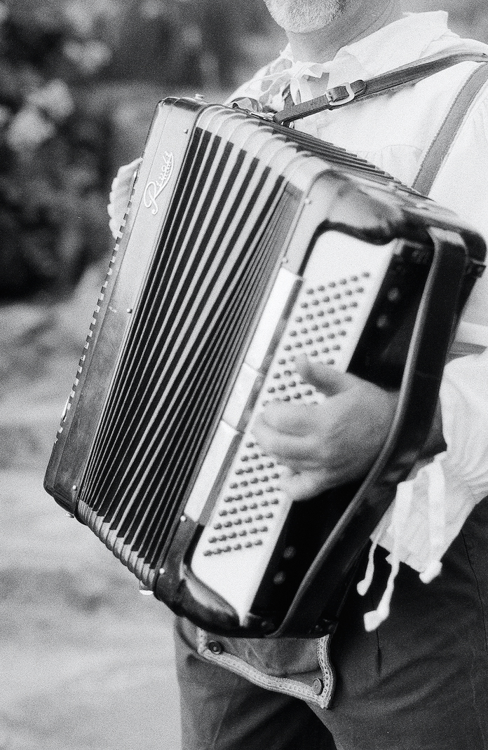 lisa louis wedding accordion