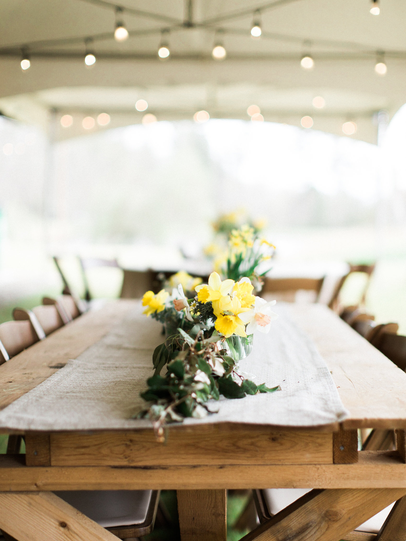 daffodil centerpieces