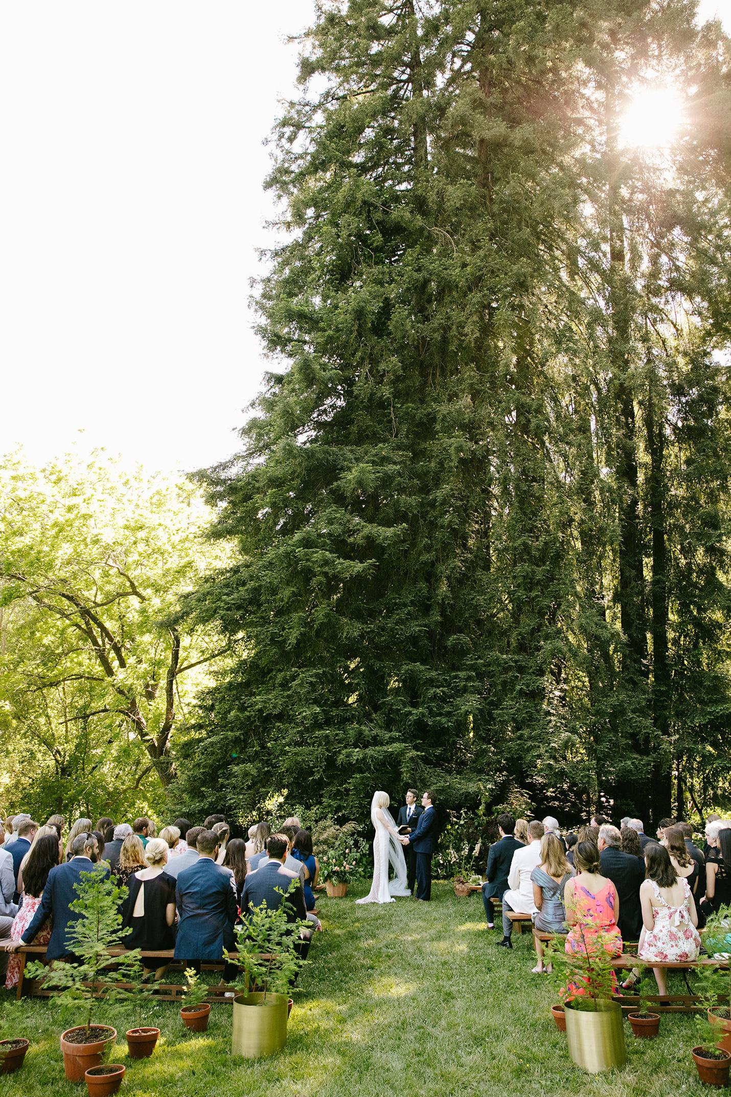 kendall jackson wedding outdoor ceremony