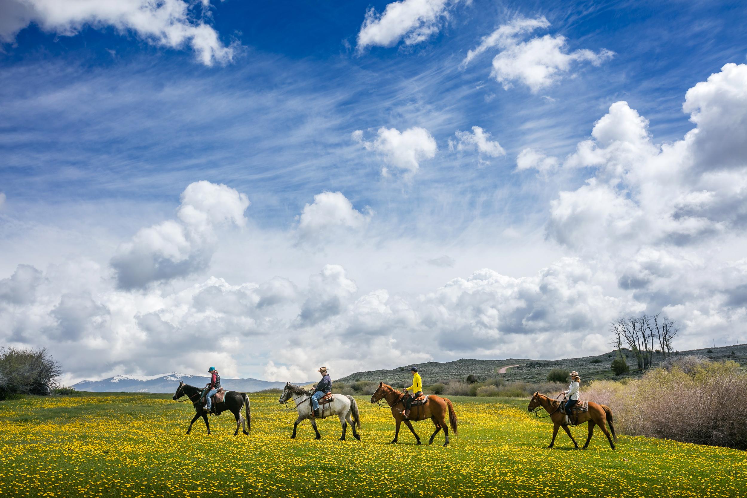 dude ranch honeymoon magee brush creek sky grass horses ride