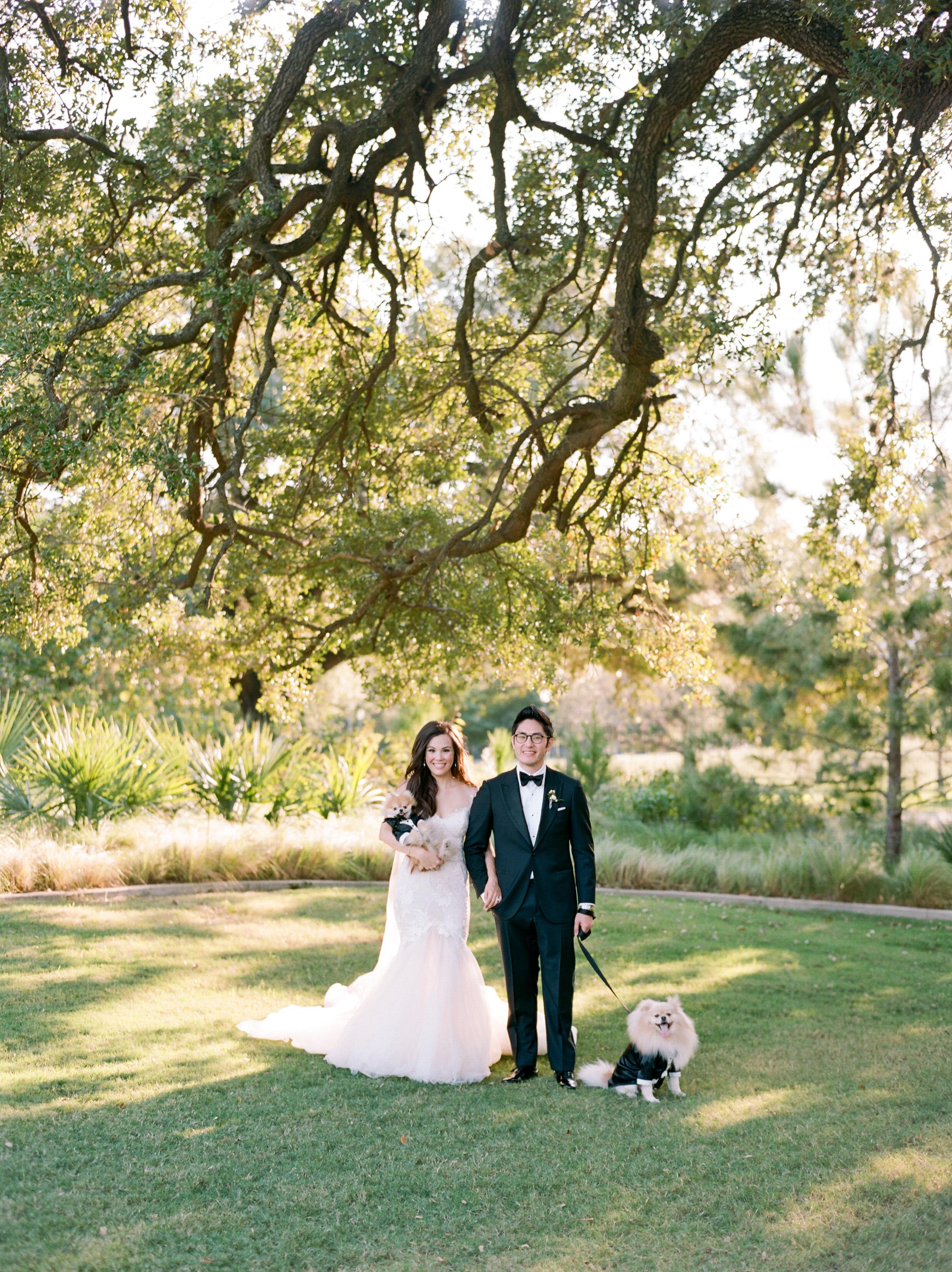 texas wedding dog tux couple under tree