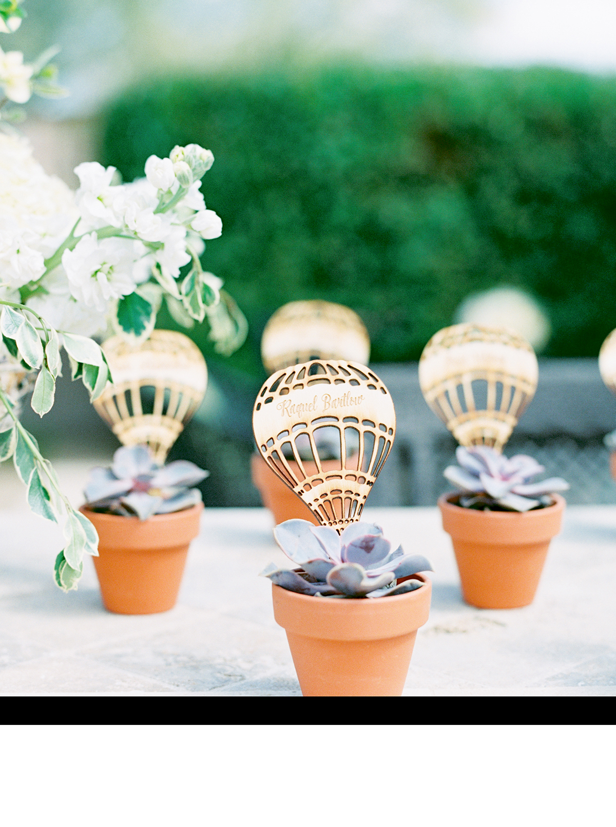 succulent favors with gold paper hot air balloons