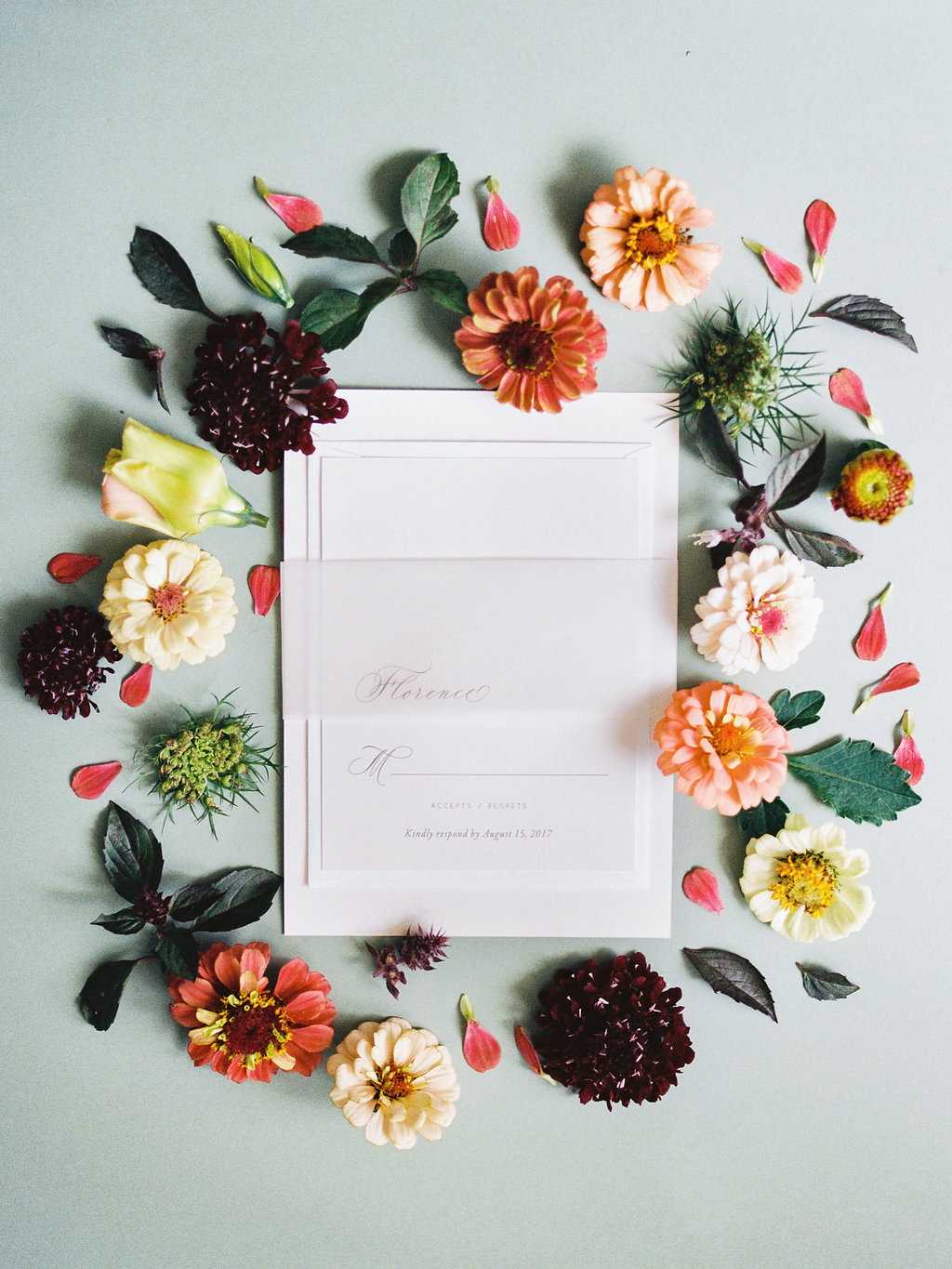vellum band for stationary suite
