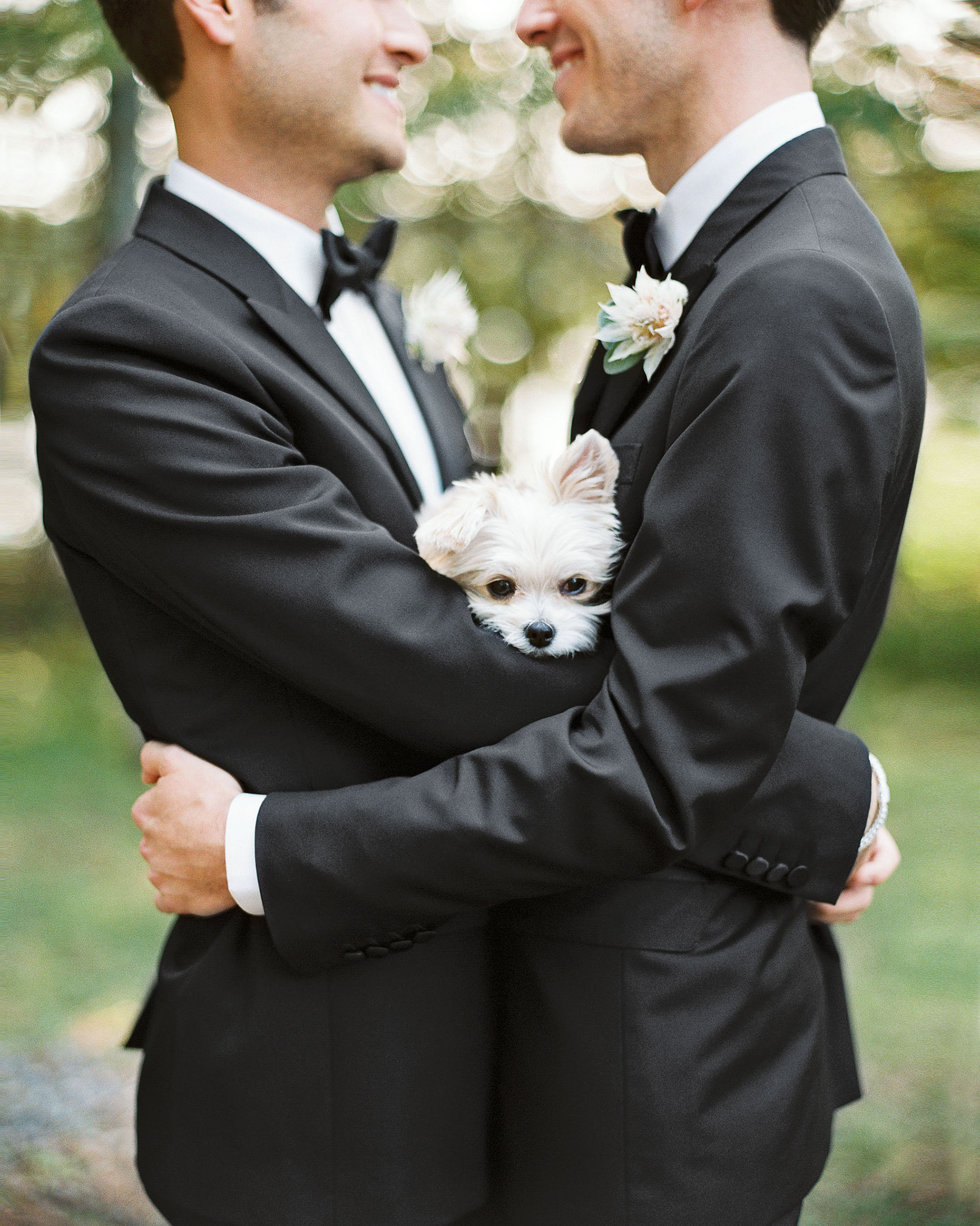tory sean wedding lake placid new york couple embrace grooms dog