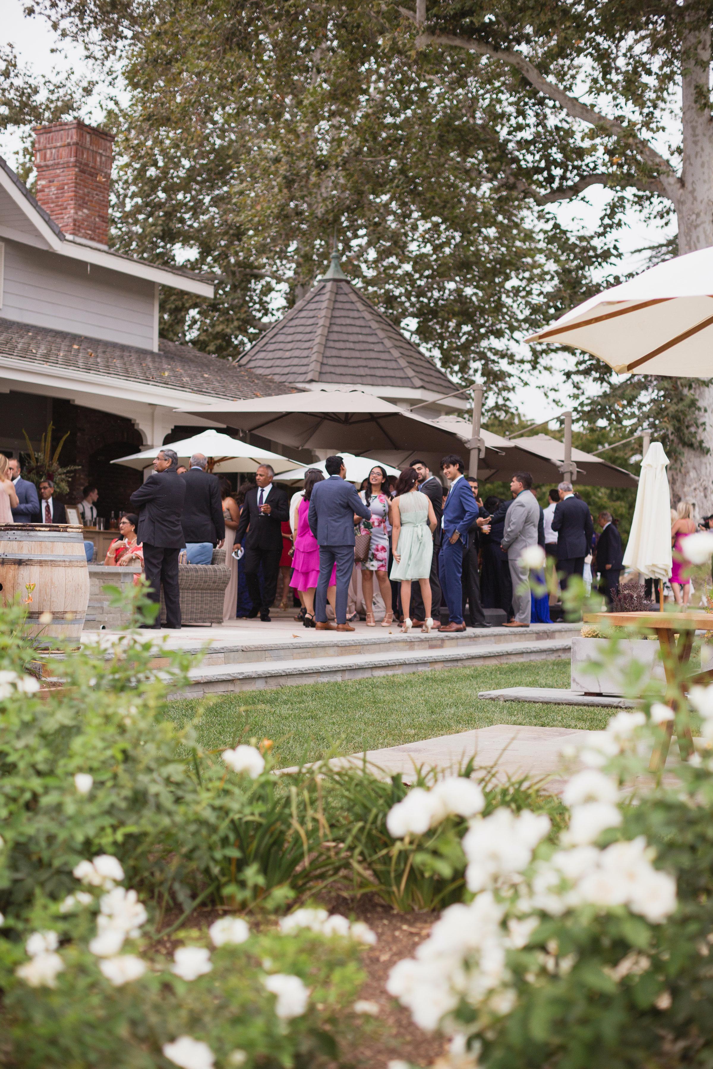 california indian jewish wedding outdoor cocktail hour