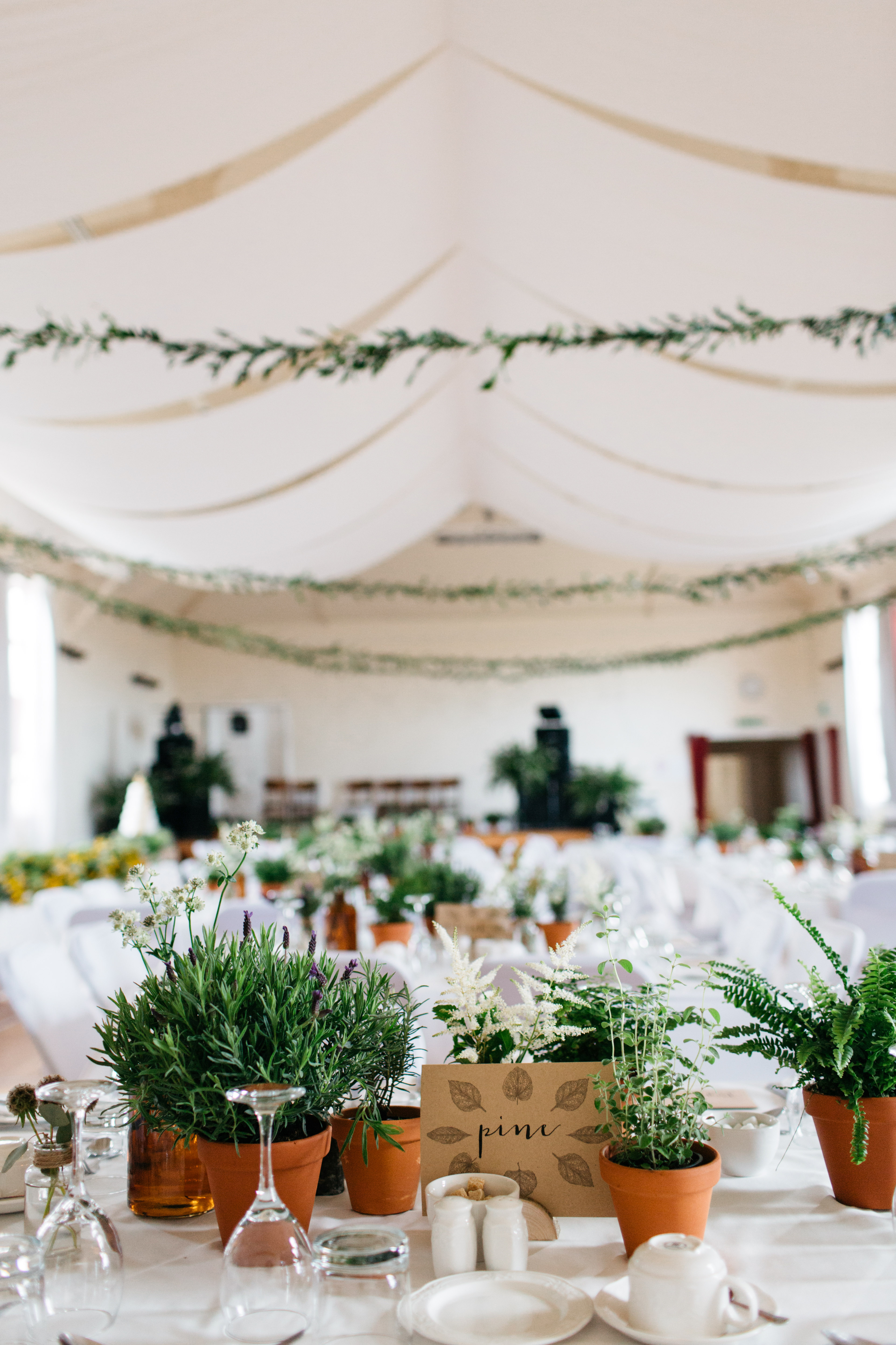 greenery plant in pots table setting reception tent