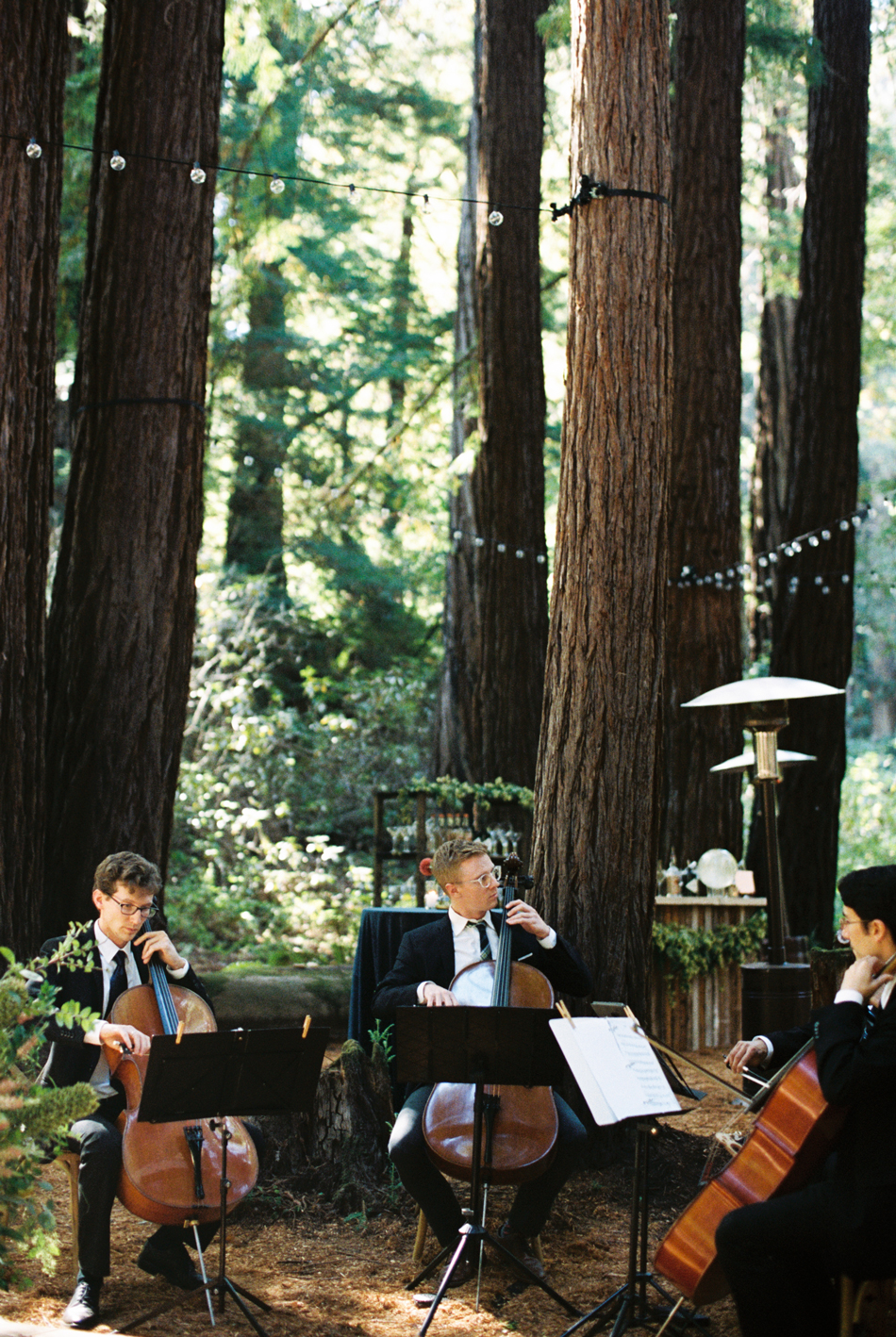 cello musicians wedding music outdoor forest