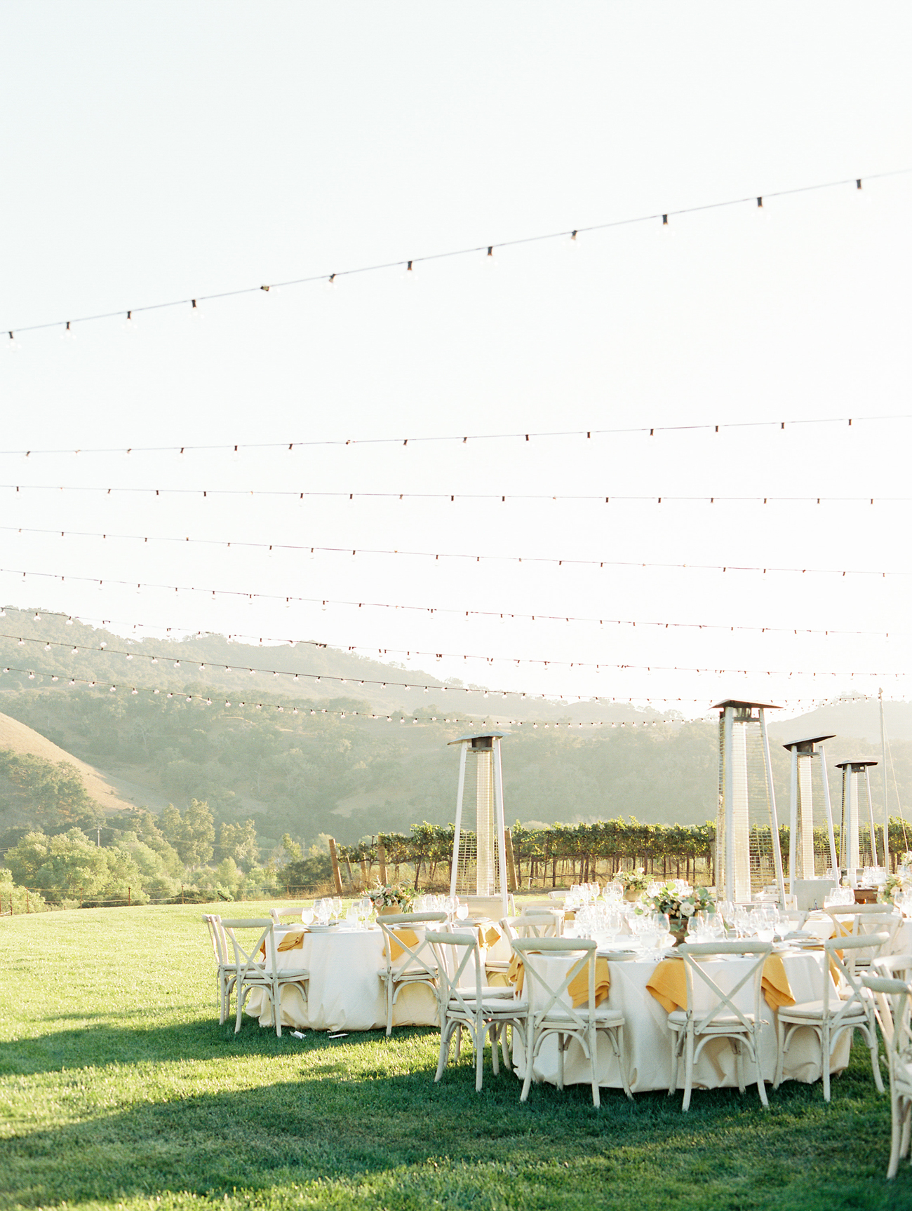 outdoor vineyard venue wedding reception under bistro lighting