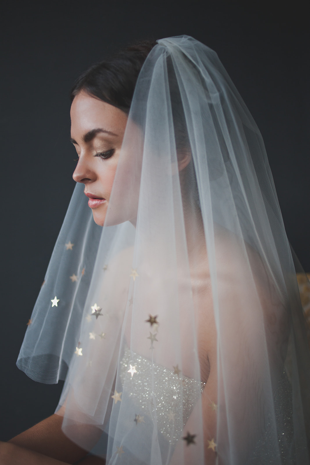 bride wearing veil with stars