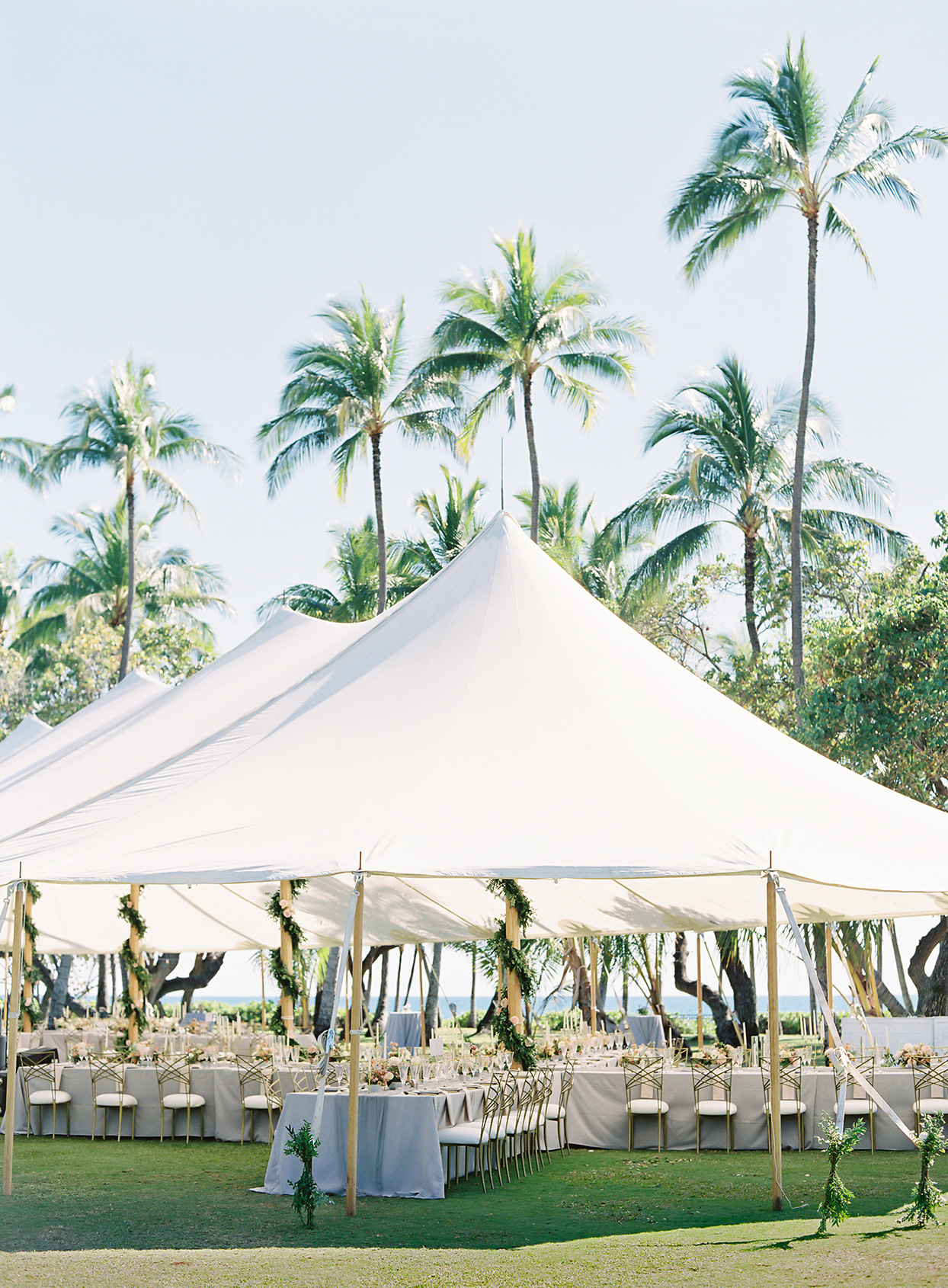 azuki sam wedding reception tent