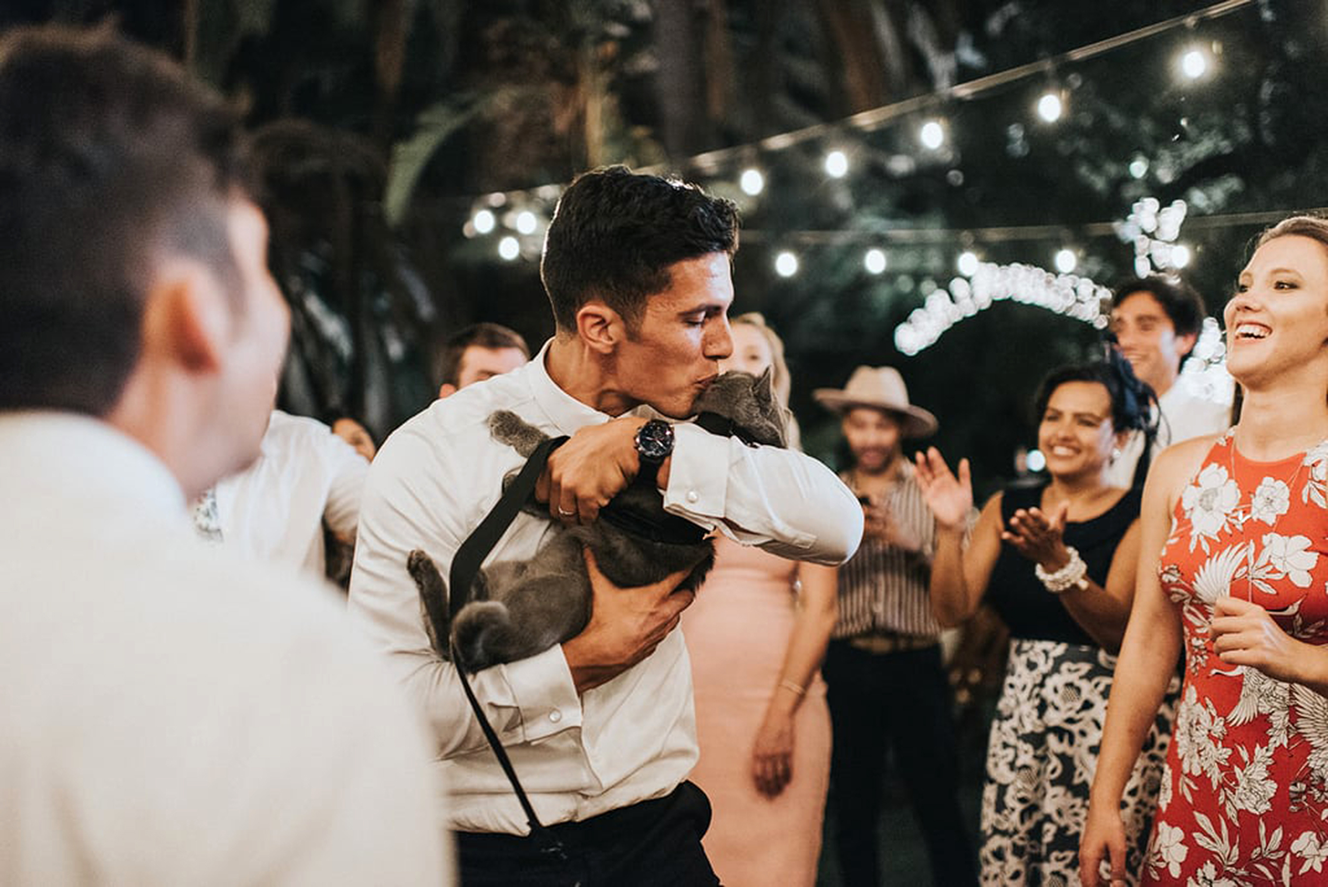 groom's cat serves as best man at wedding