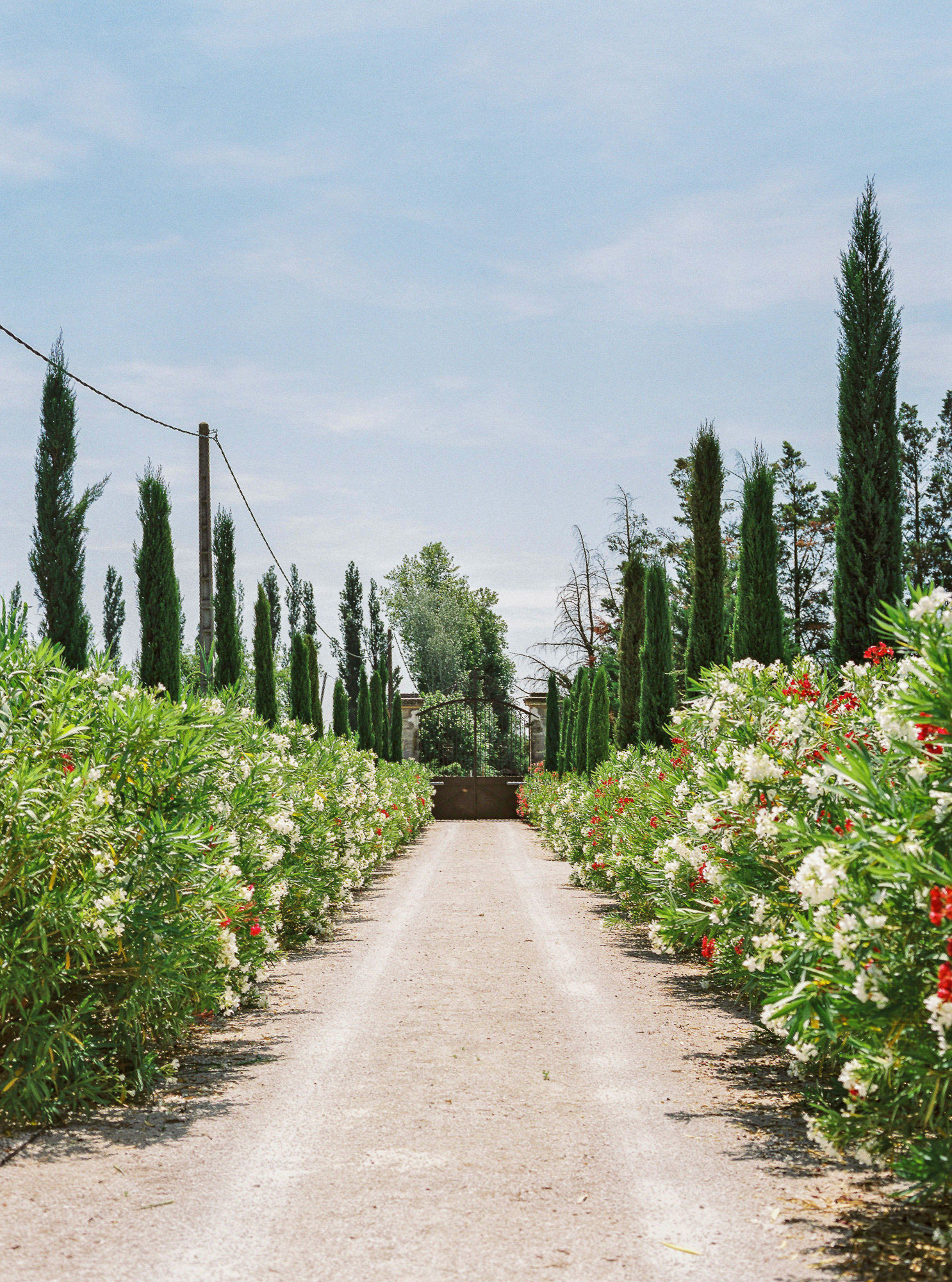 samantha grayson wedding road to garden