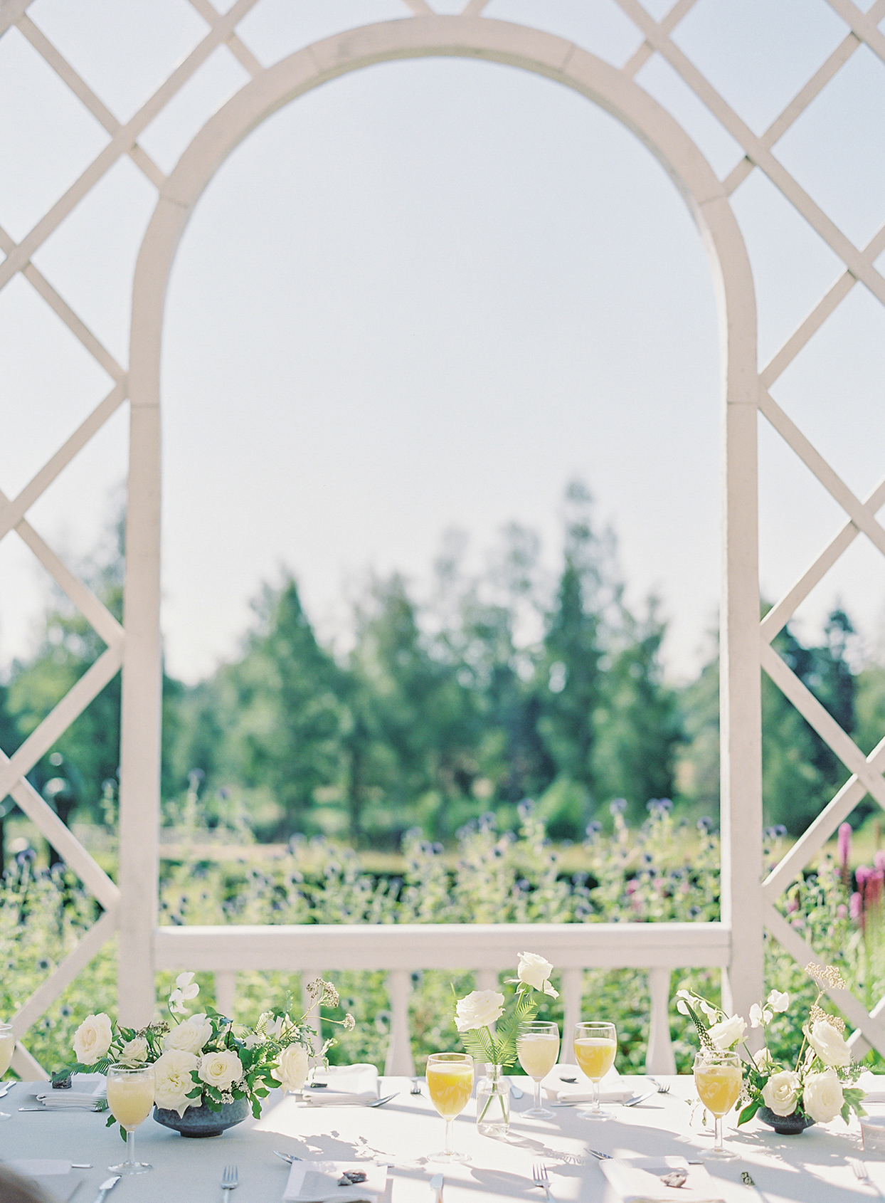 laura alexander wedding brunch table with white trellis