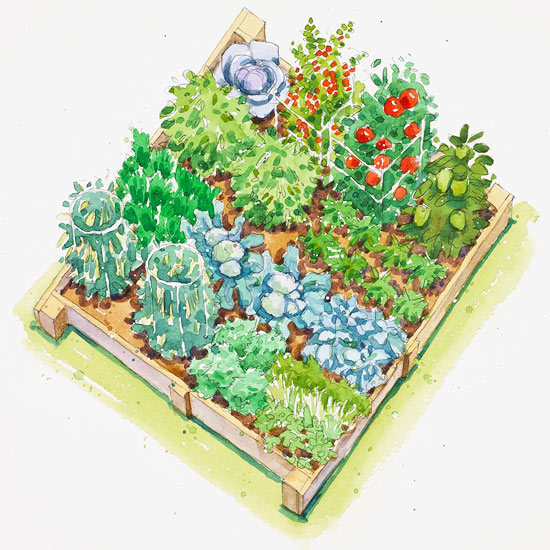 Garden Designs And Layouts >> Plans For Vegetable Gardens