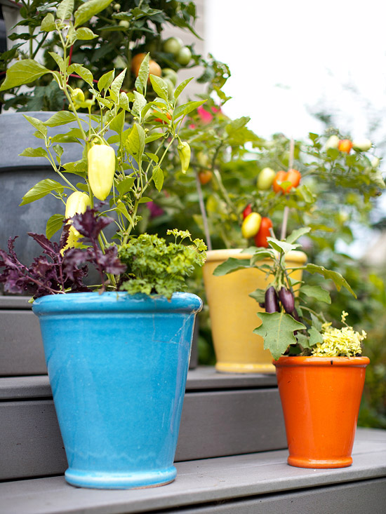 Fresh Ideas for Growing Vegetables in Containers | Better Homes ...