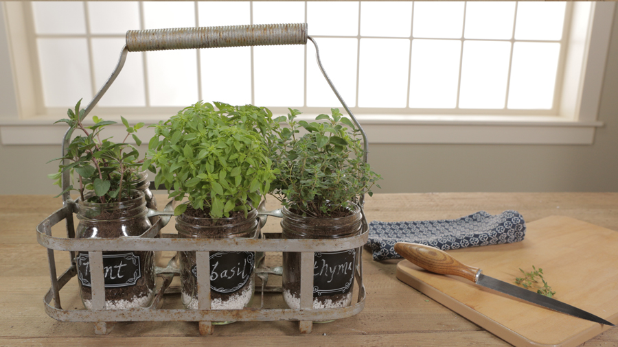 Portable Indoor Herb Garden