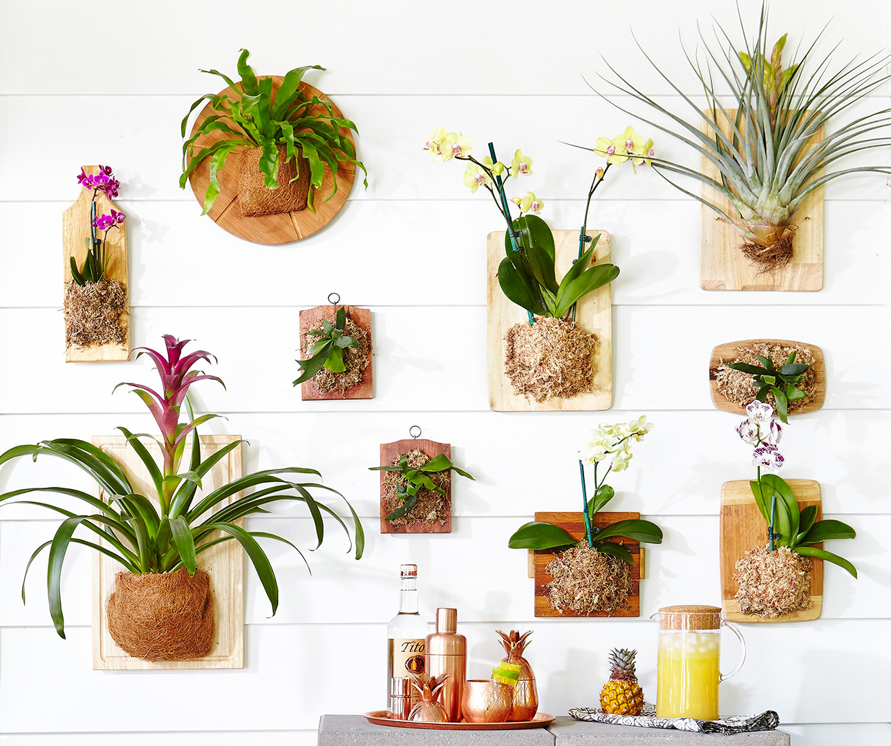 hanging wood wall planters