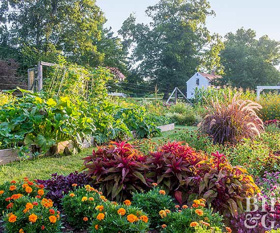 Vegetable Gardens That Look Great Better Homes Gardens