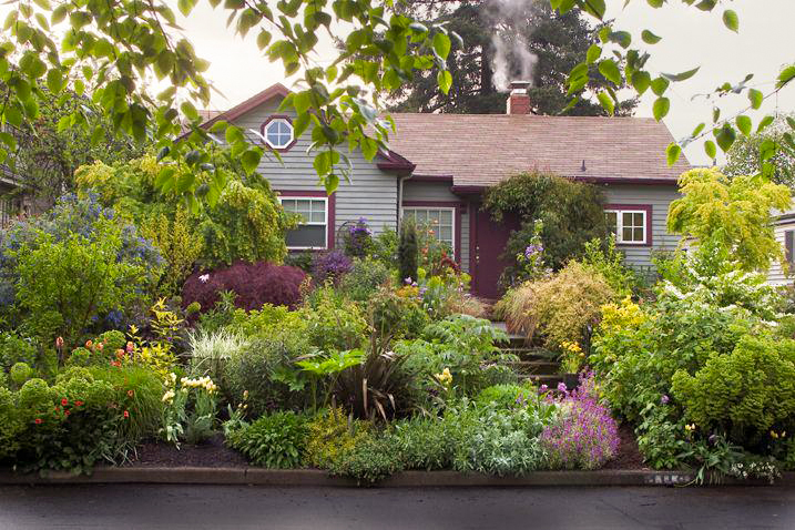 16 Simple Solutions for Small-Space Landscapes on