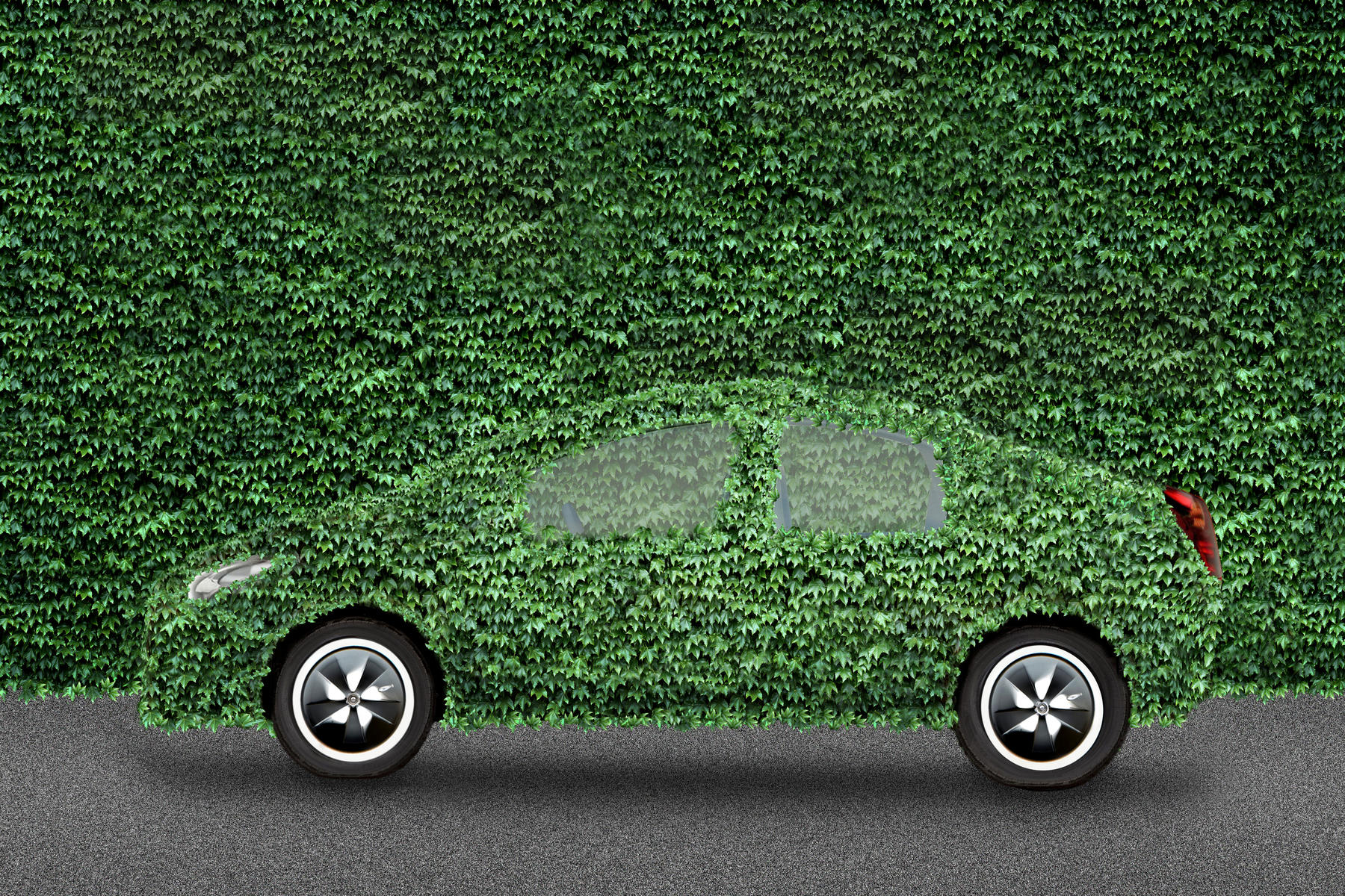 hybrid car covered in greens