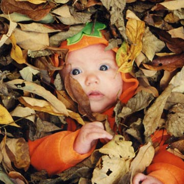 Baby's Face Poking Out Of The Leaves